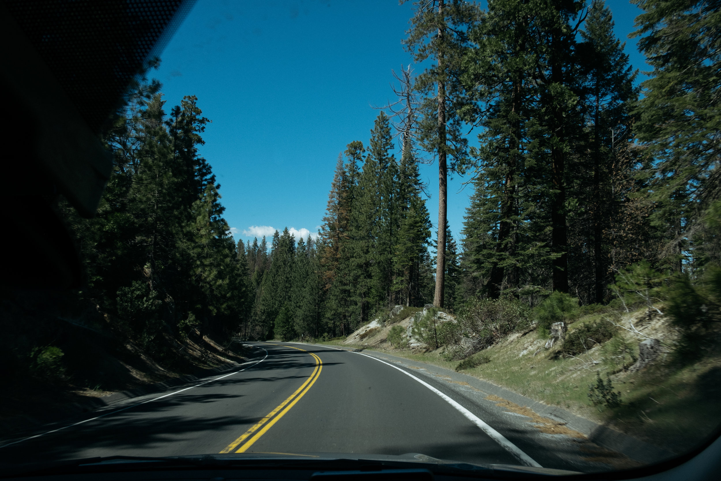 Driving through Yosemite National Park
