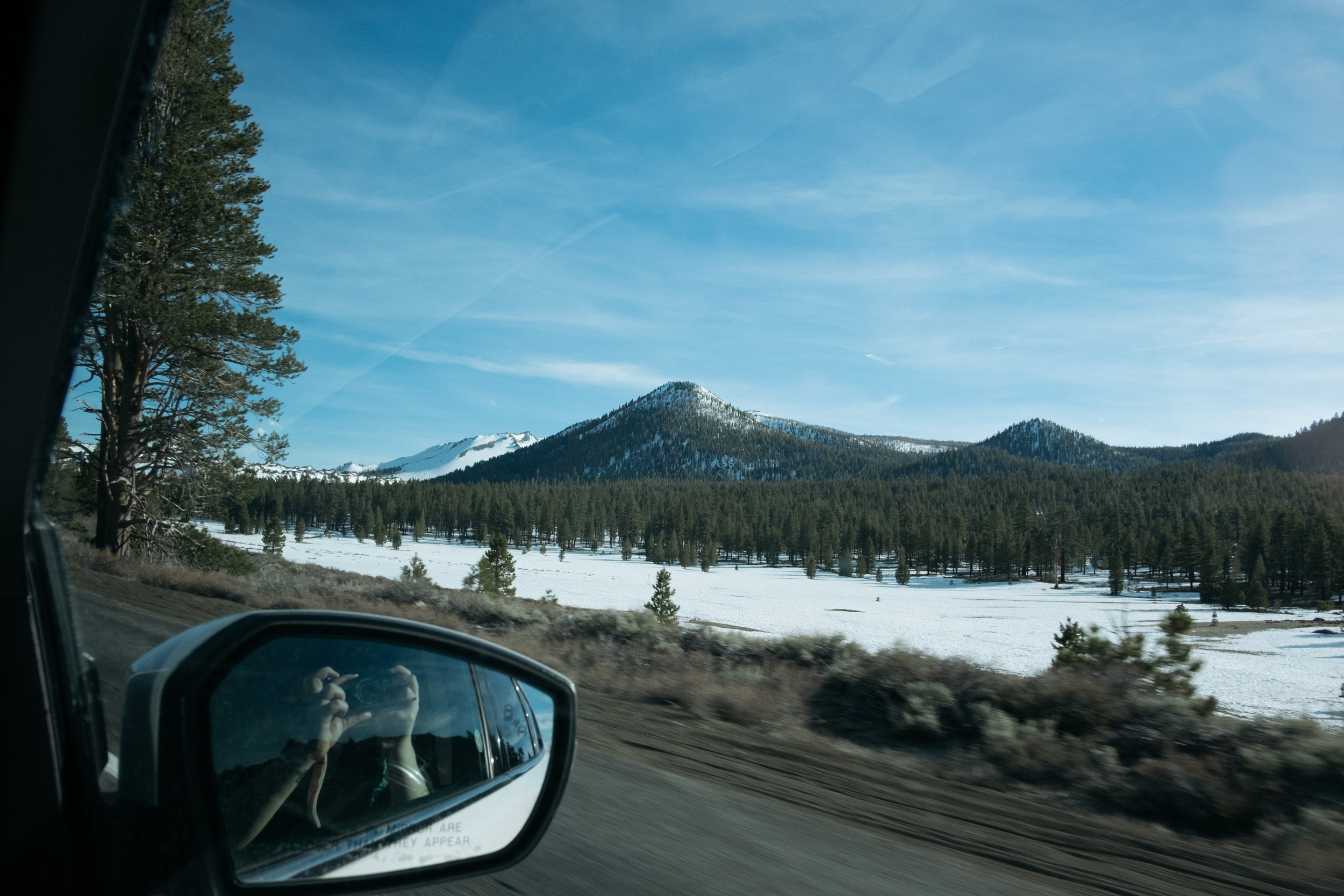 Snowy mountains and trees in California