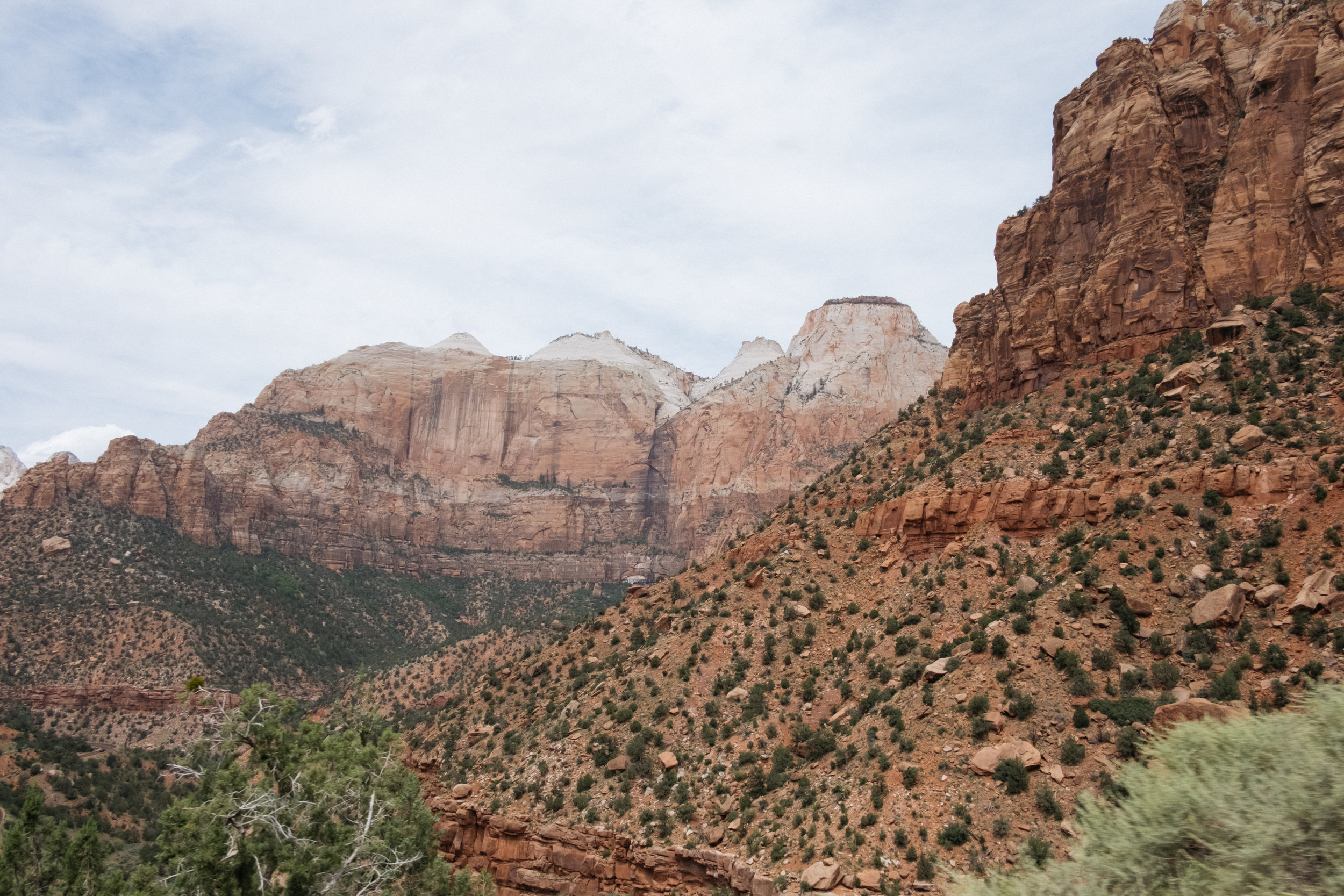 Viewpoint in Zion