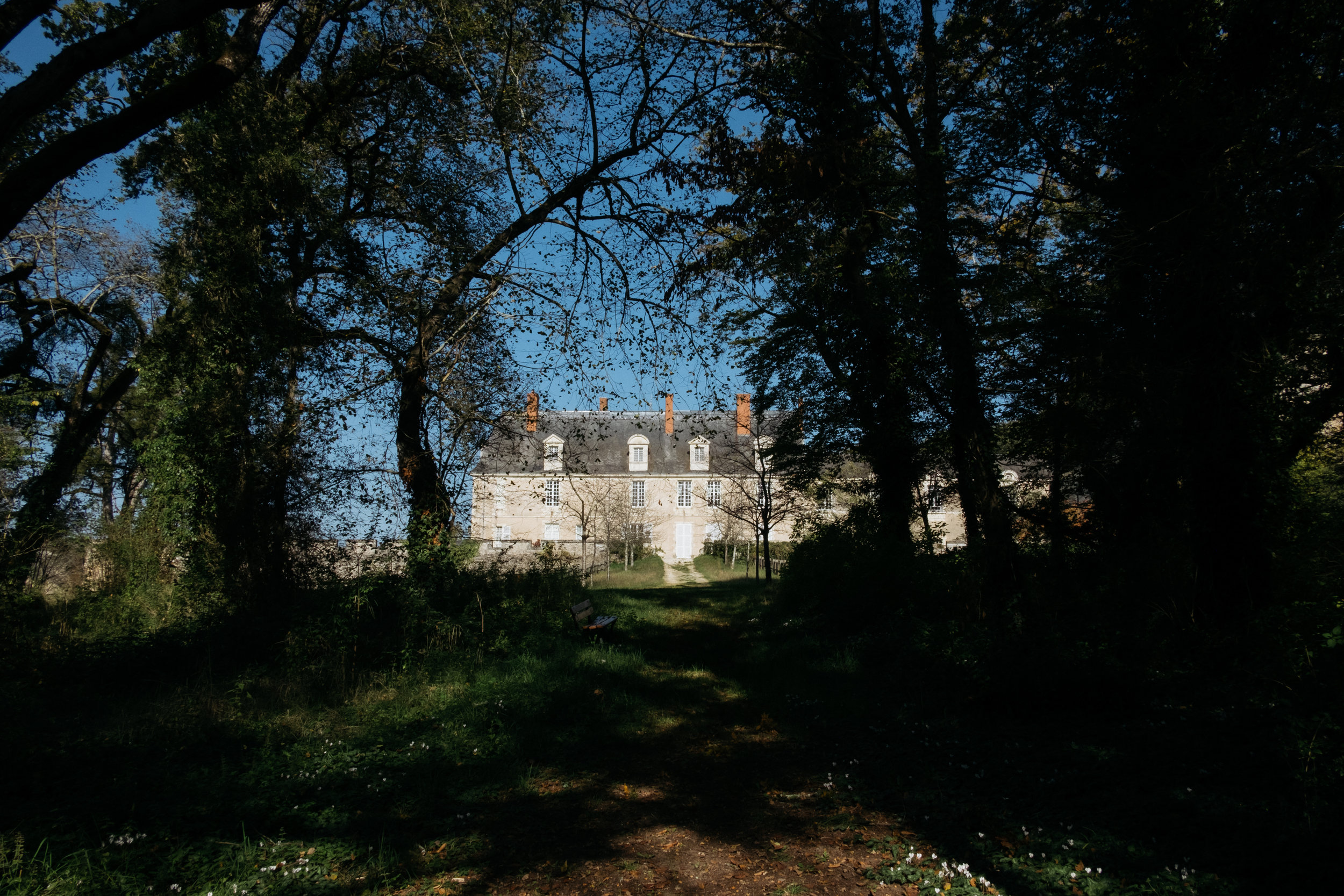 French chateau and woodland