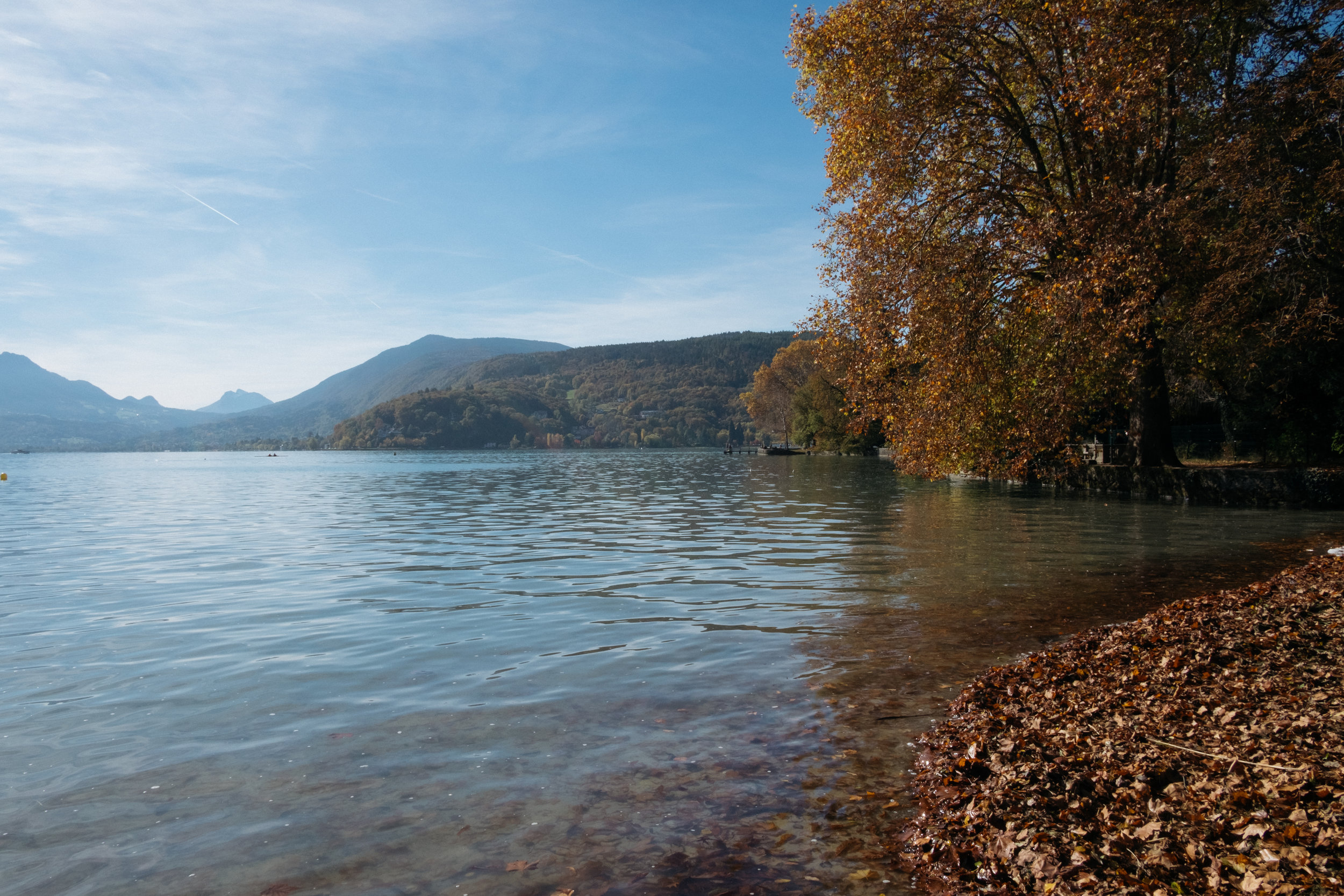 Lake Annecy with autumnal trees