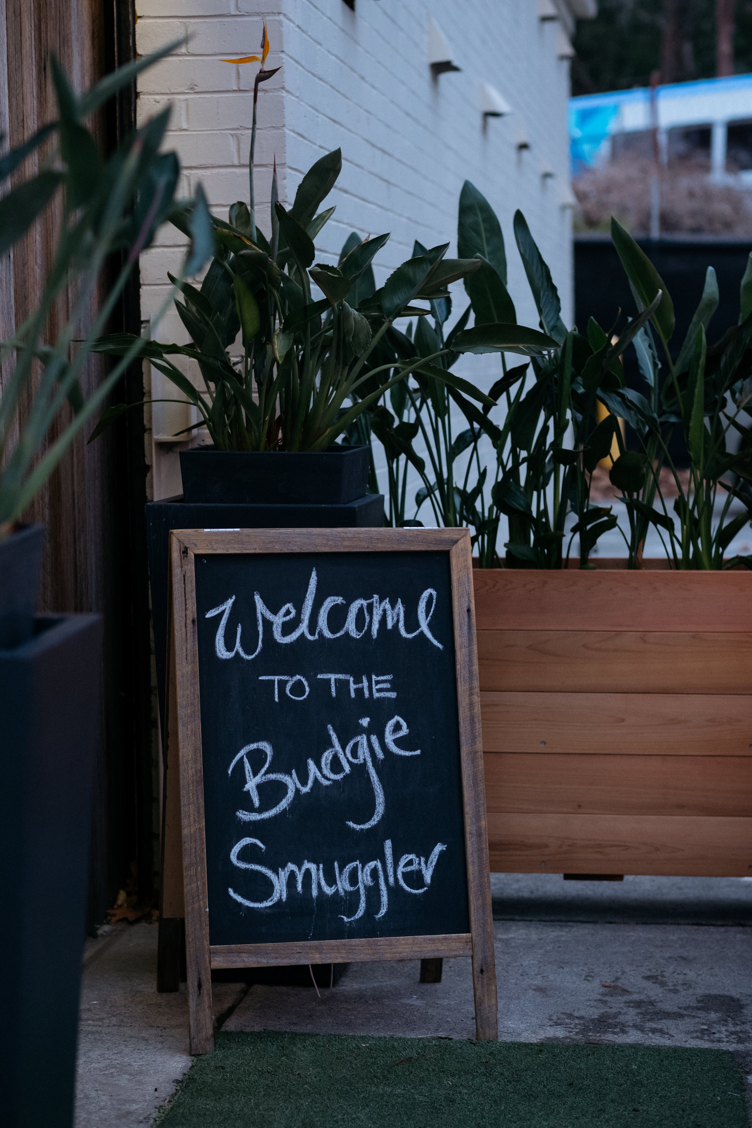 Welcome to the Budgie Smuggler sign - The Budgie Smuggler, Ringwood, VIC