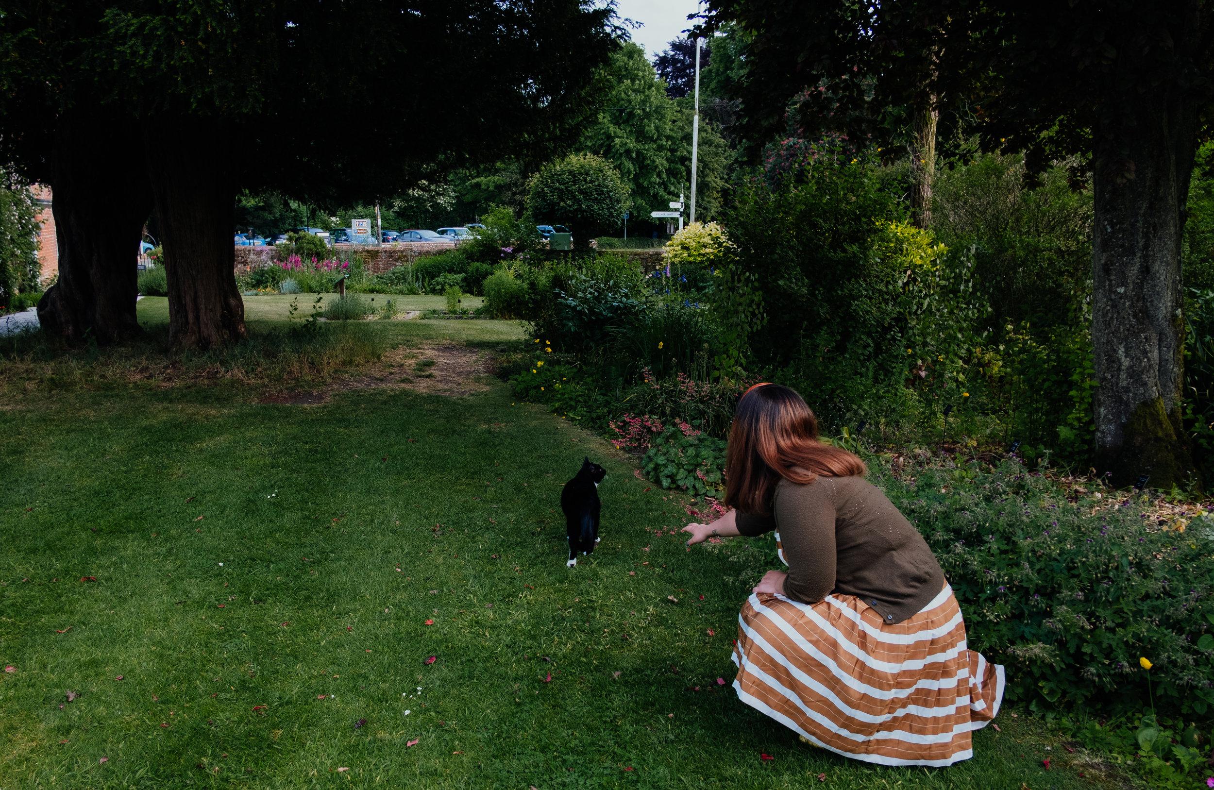 Jane Austen's House Museum cat in the gardens