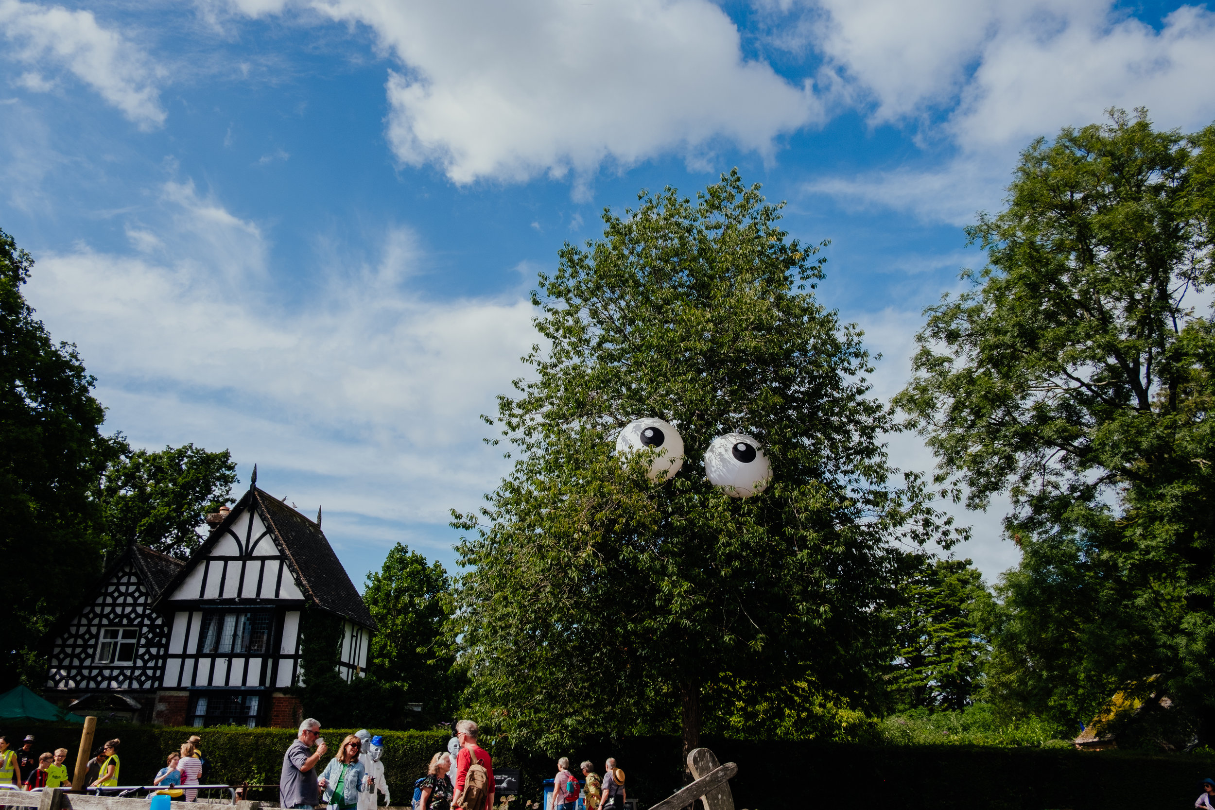 Larmer Tree Festival 2019 tree with eyes
