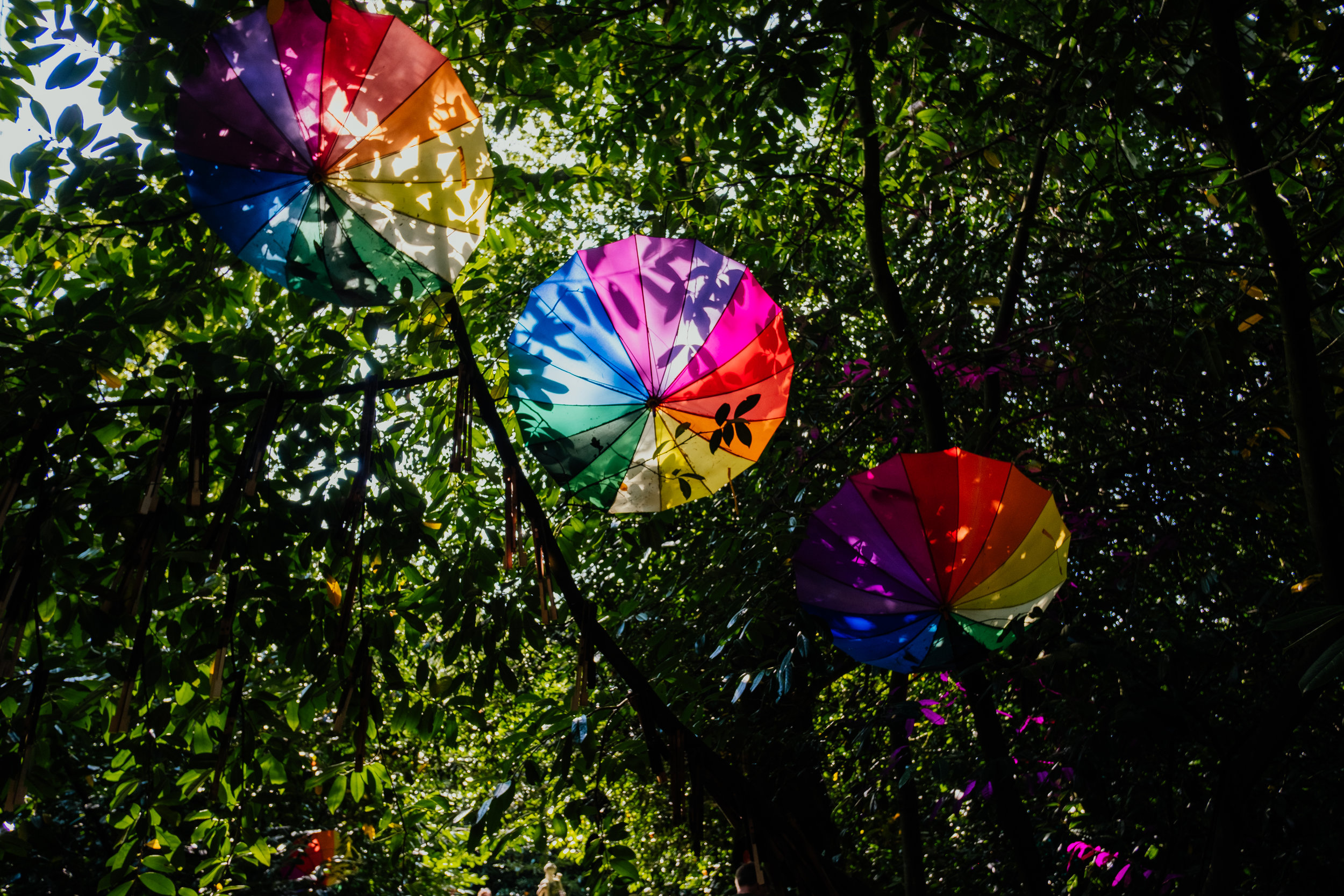 Larmer Tree Festival colourful umbrellas in the forest
