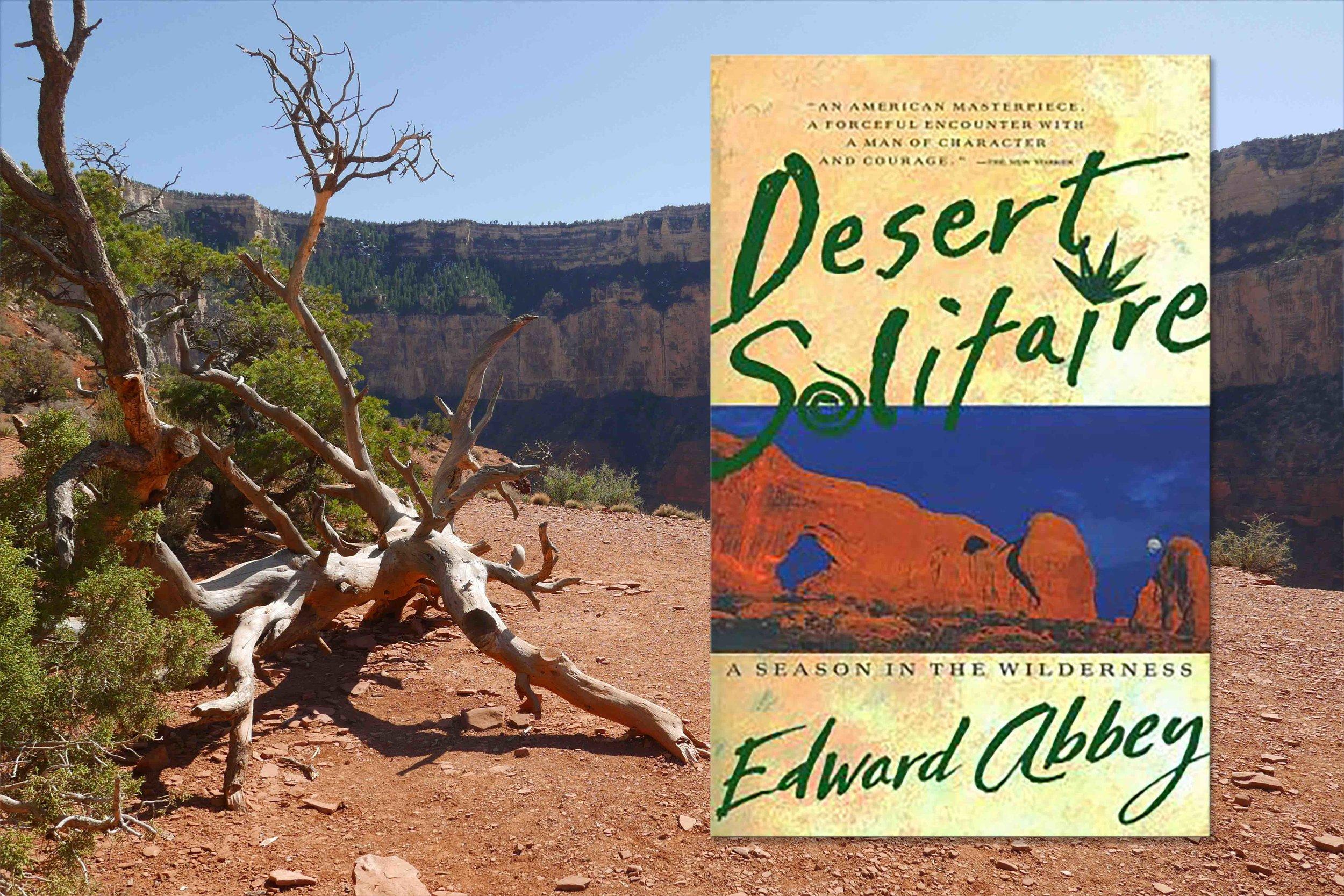 desert solitaire.jpg