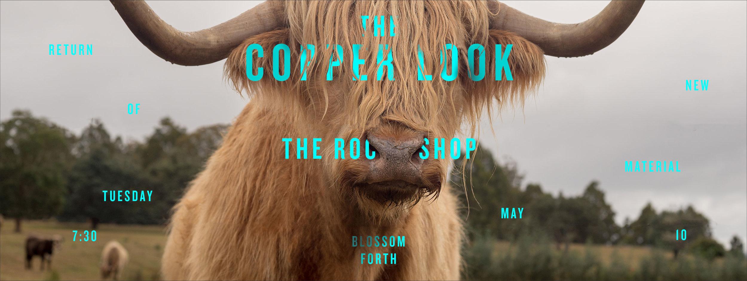 Lauren Peters-Collaer—The Copper Look