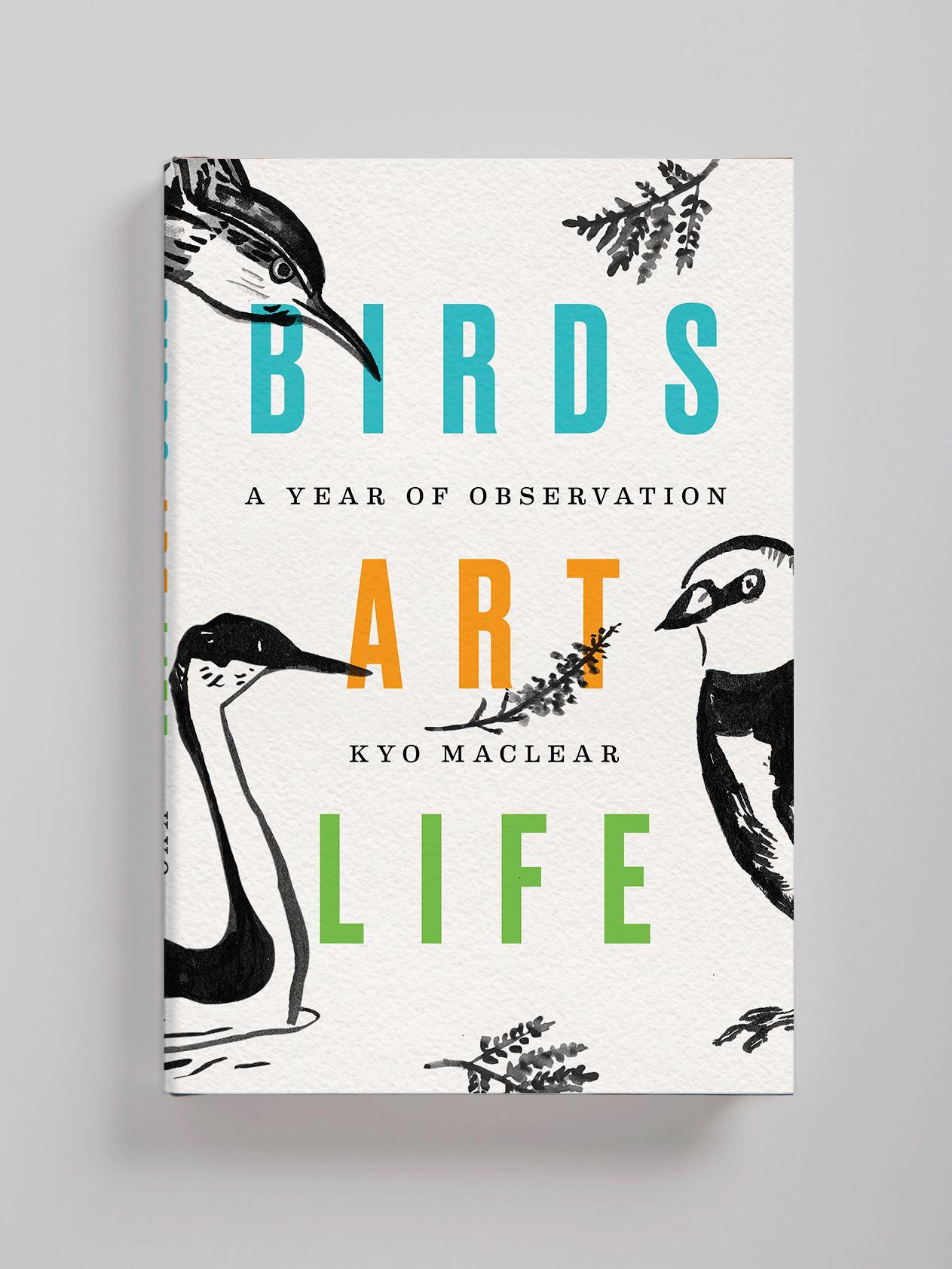 Lauren Peters-Collaer—Birds Art Life