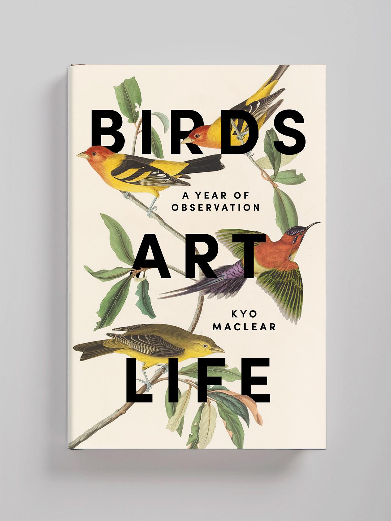 Birds-Art-Life2.jpg