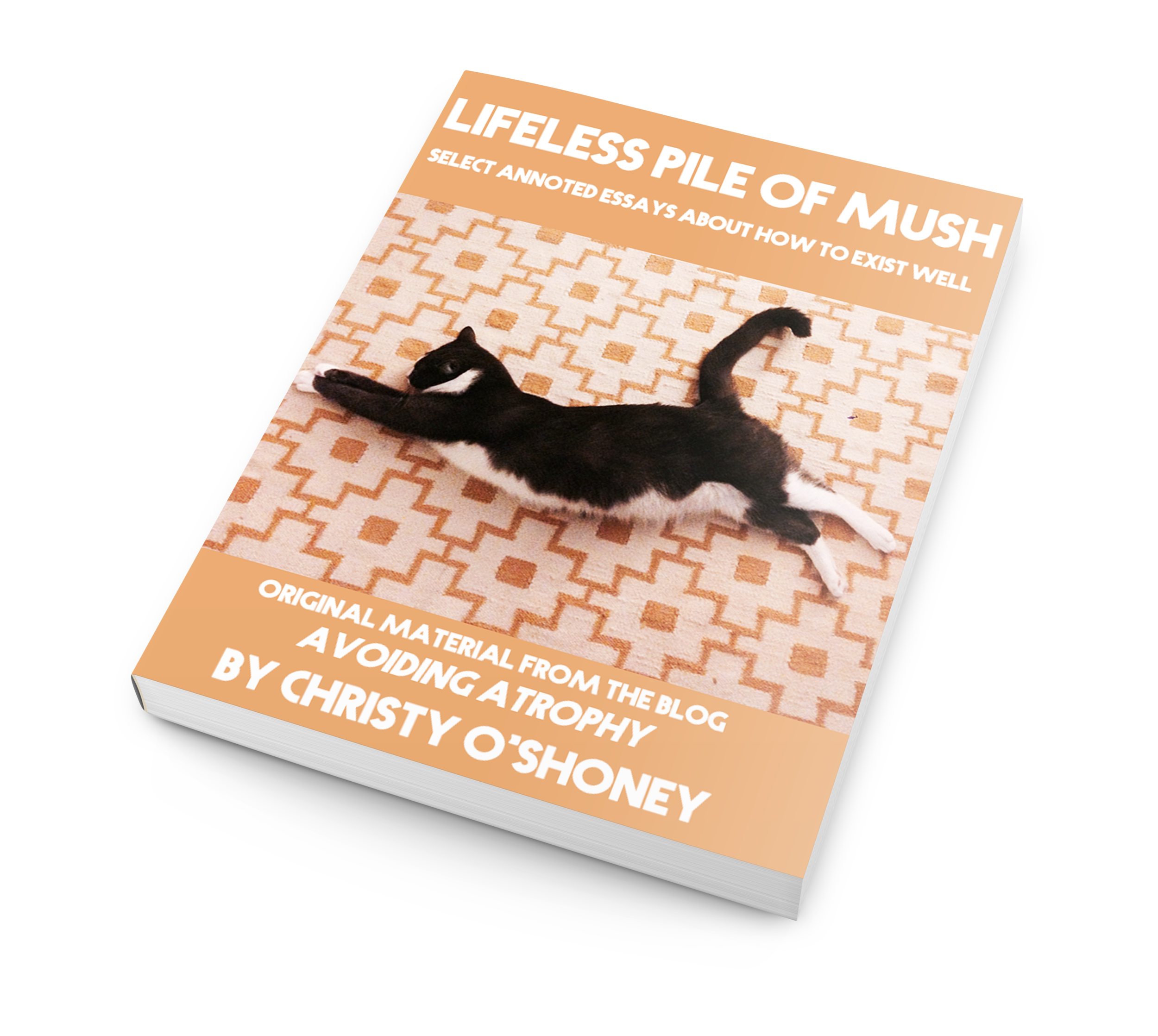 "Pre-order ""Lifeless Pile of Mush,"" the book about how to exist well from Christy O'Shoney"