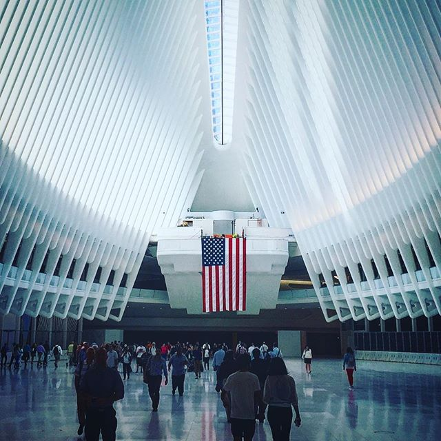 In the belly of the beast #calatrava #architecture 👌🏻