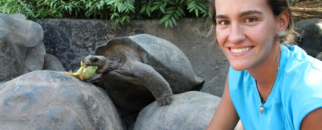Volunteer Galapagos Tortoise Center
