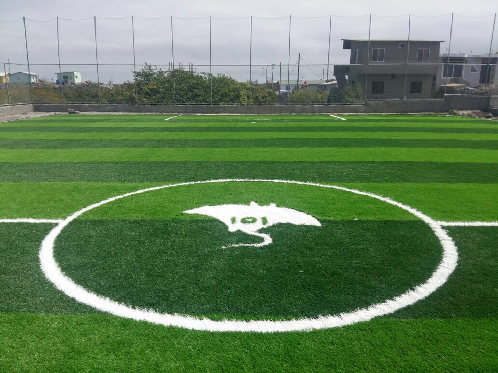 Soccer Field.png