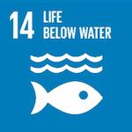 Coastal Habitat Restoration    Conserving Underwater Cuba