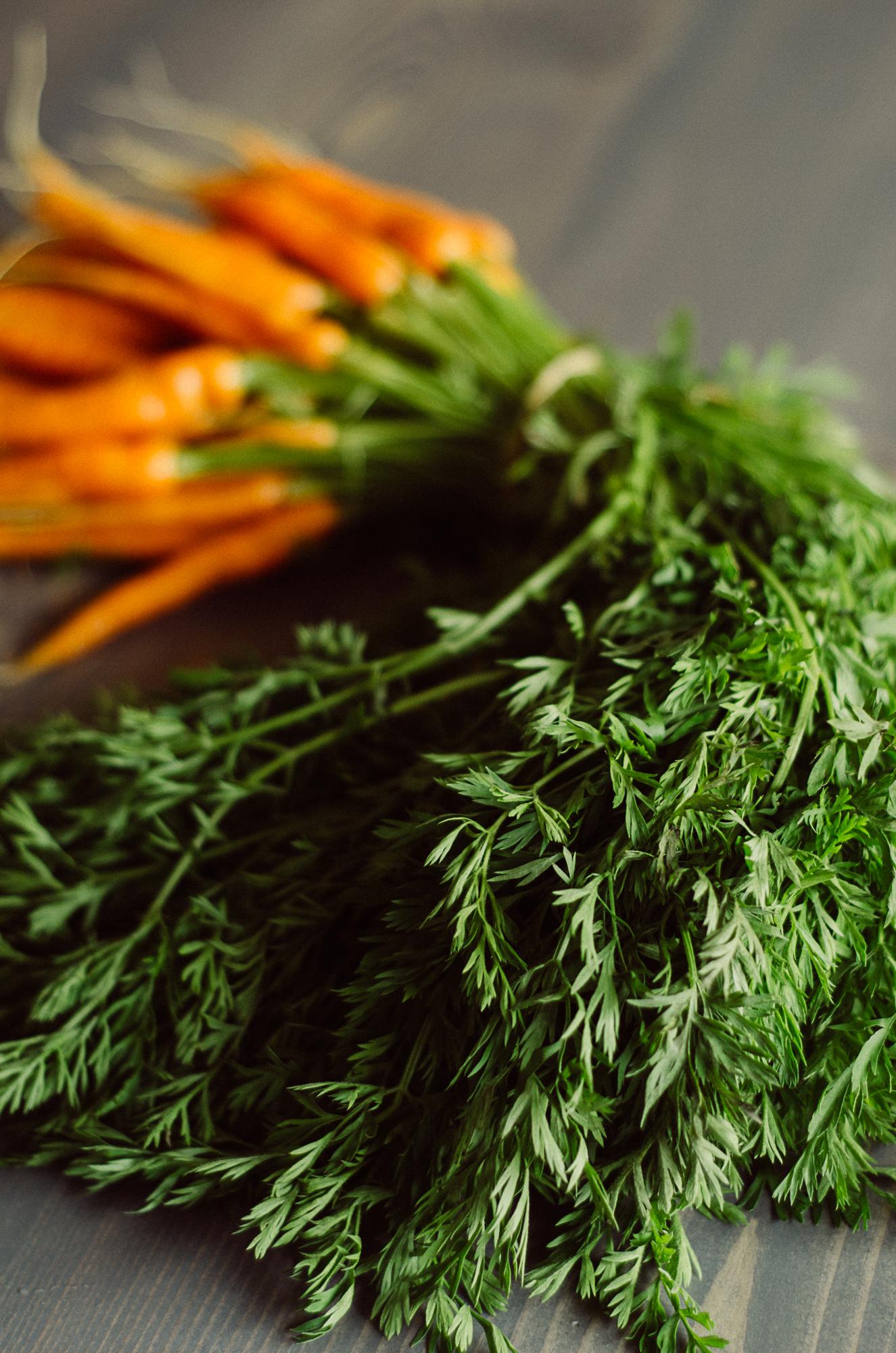 Are carrot tops edible? Carrot top recipes.