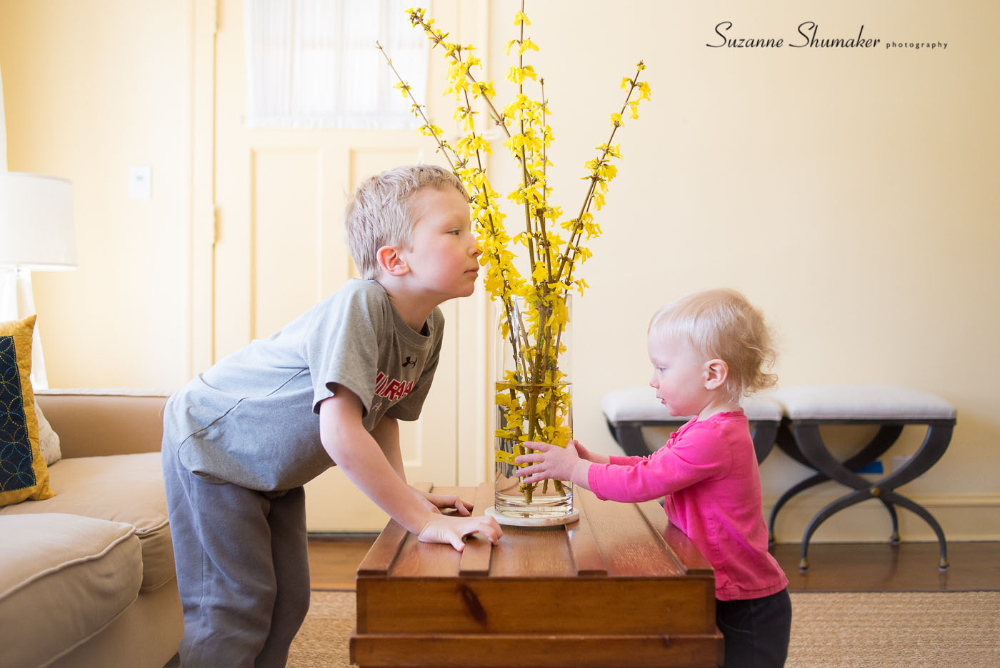 We brought in some Forsythia this cold snowy morning.