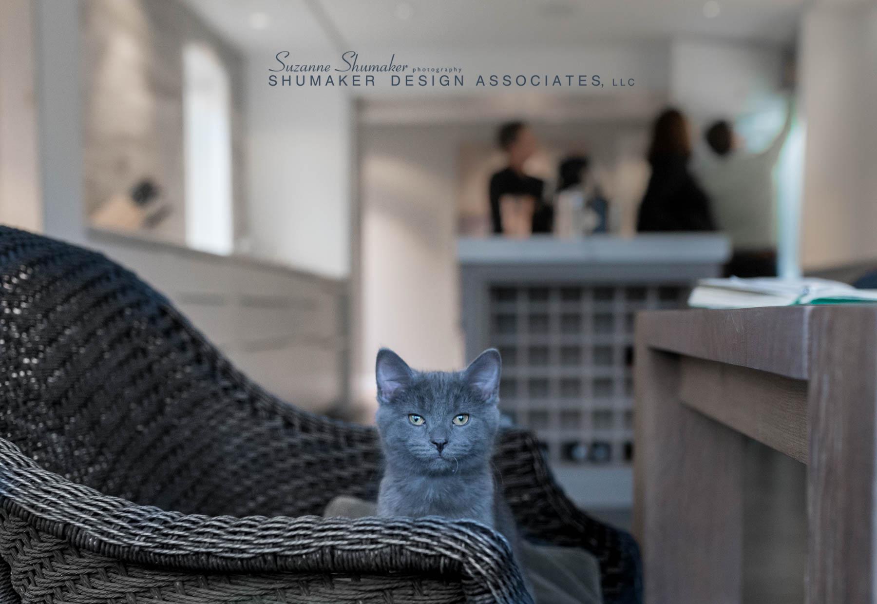 Winnetka kitchenssphoto.jpg