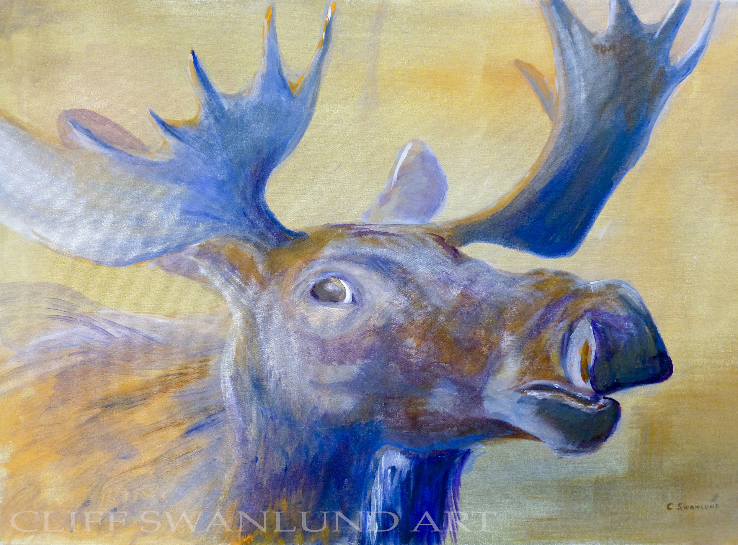 """available- $1000.00 framed-""""Moose Head"""" 24"""" X 20"""" - contact artist"""
