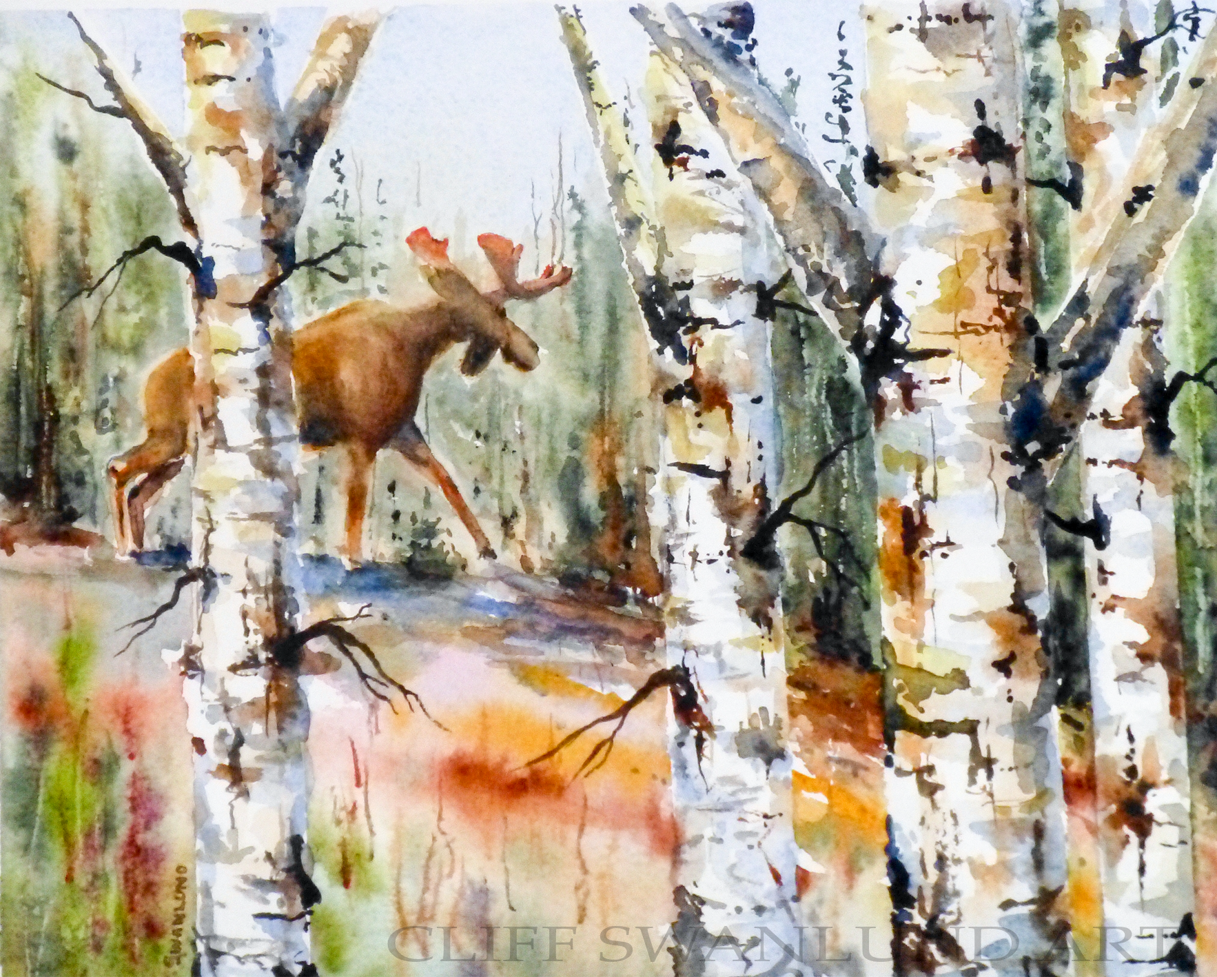 "sold-""Moose version II"" 8"" X 10"""