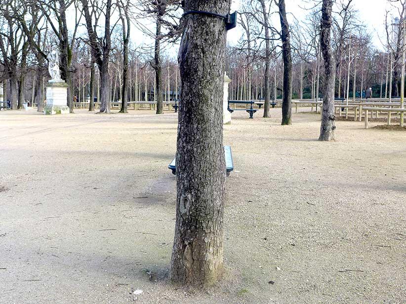 Paris2015-02-37.JPG