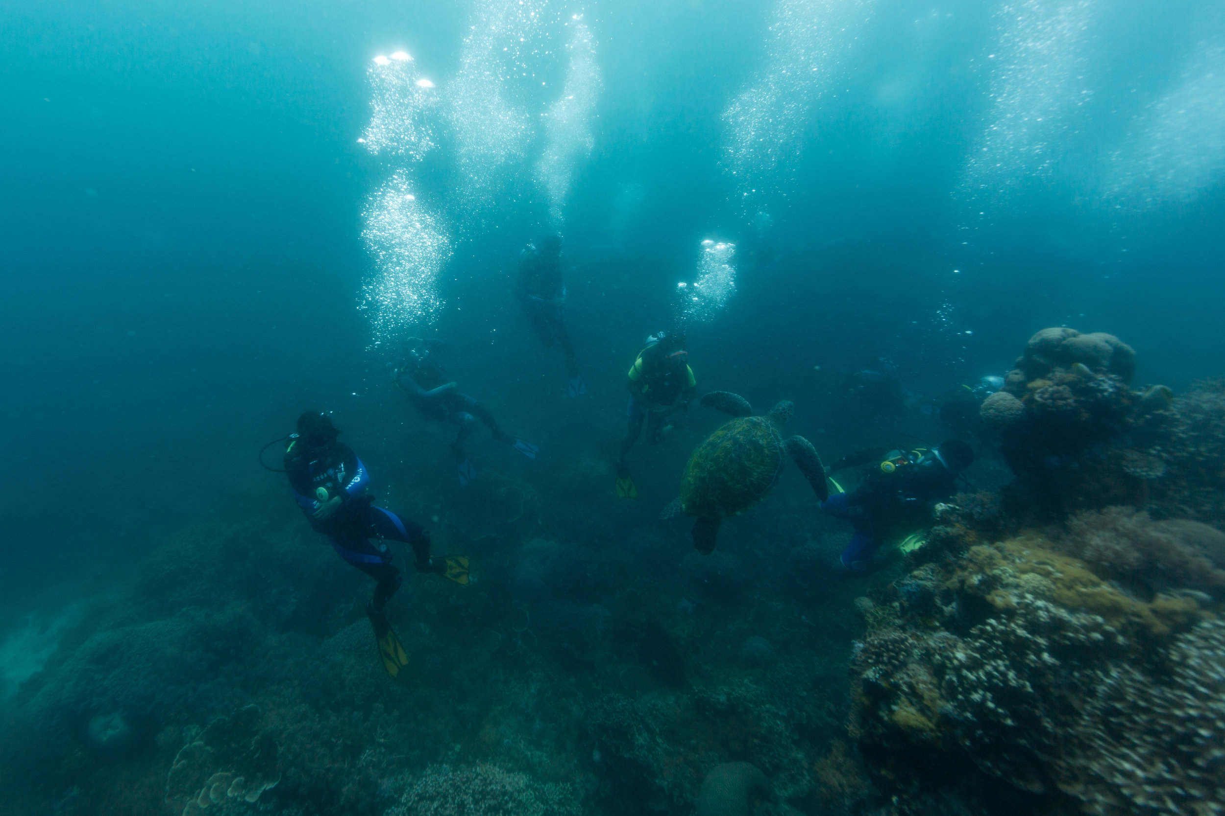 Jerome and his dive classmates on their last dive at Katipanan Reef before their graduation, April 2017