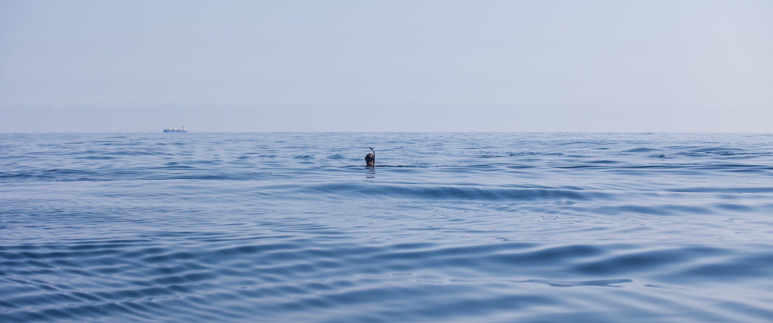 Co-Director James Sherwood swimming out on the high seas in the Pelagos Sanctuary. If you look closely, you can see a cargo ship in the distance.