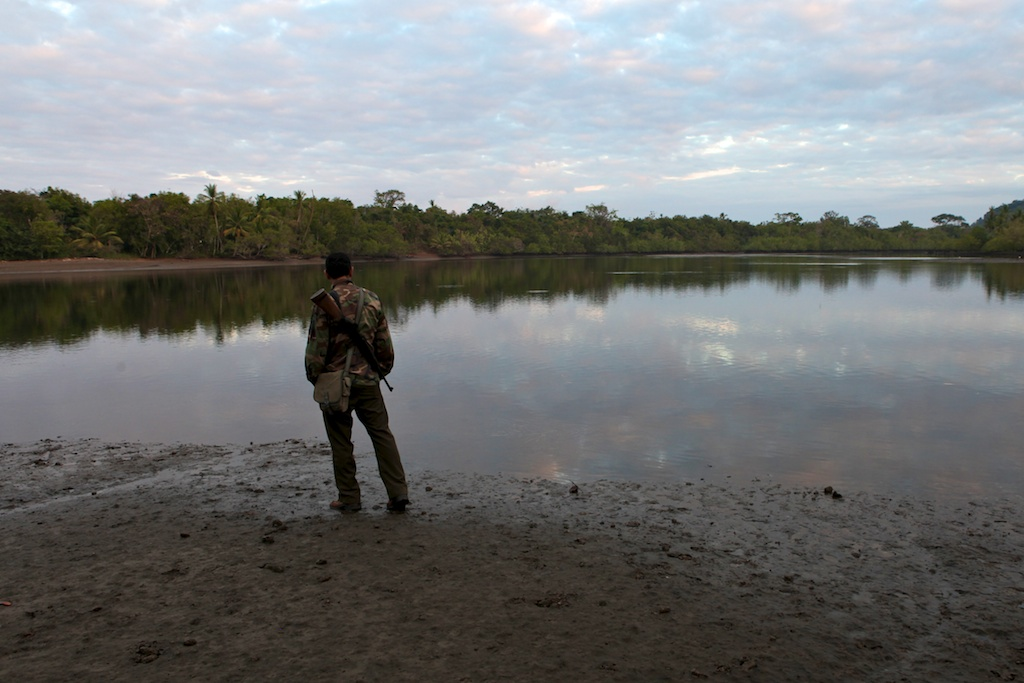 Corcovado park ranger Mauricio Jimenez at dawn, 2012. (See the link to the full story. 'Corcovado's Dark Secret', further below.