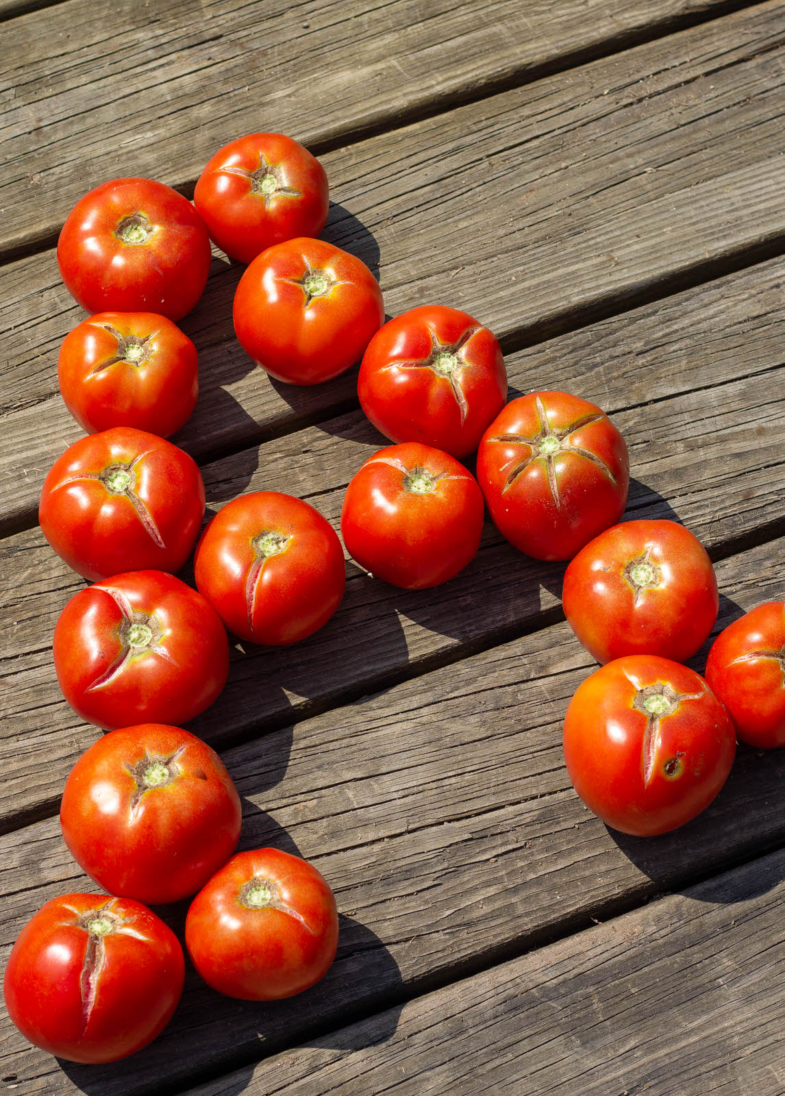 Atwater's fresh tomatoes