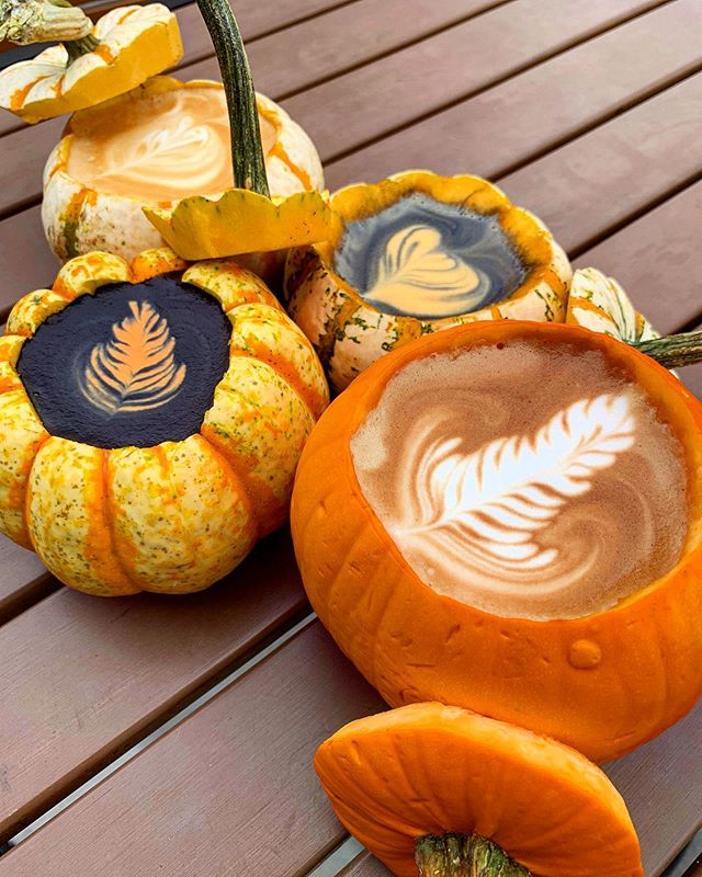 "We took ""pumpkin latte"" to a new level 🎃 ☕️ #fallvibes"