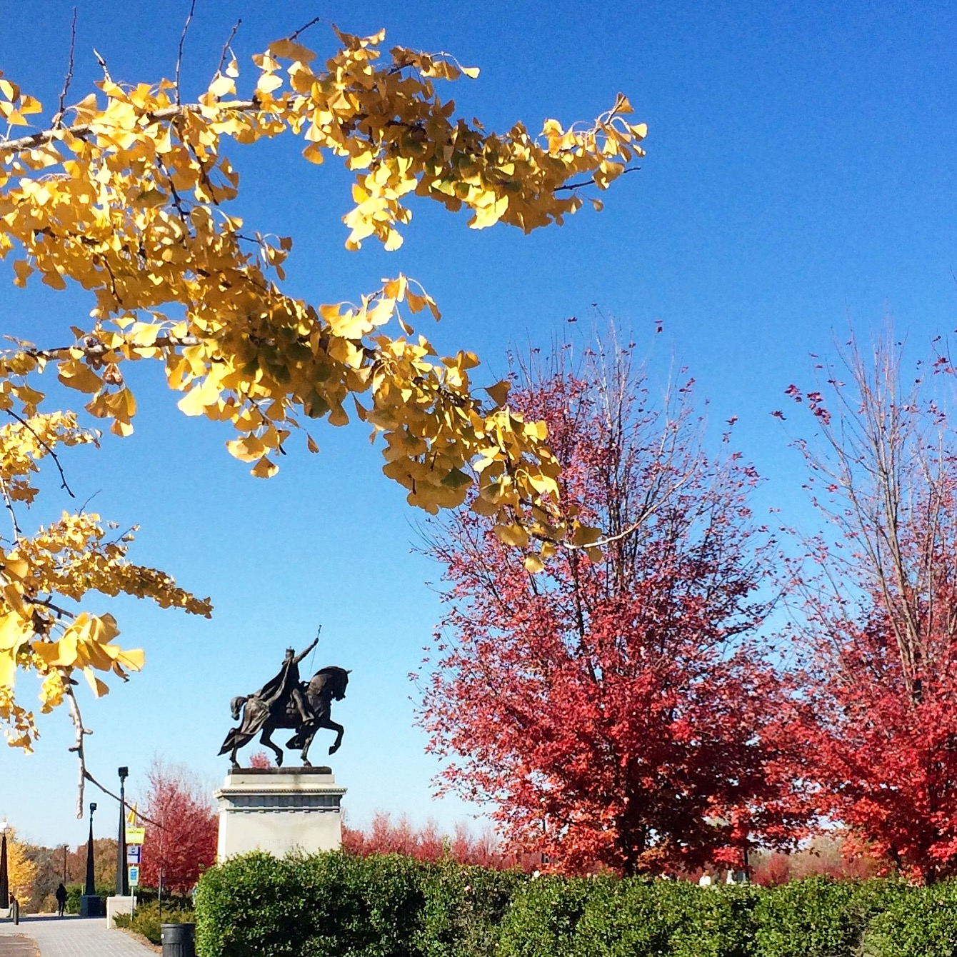 Saint Louis in Fall Colors