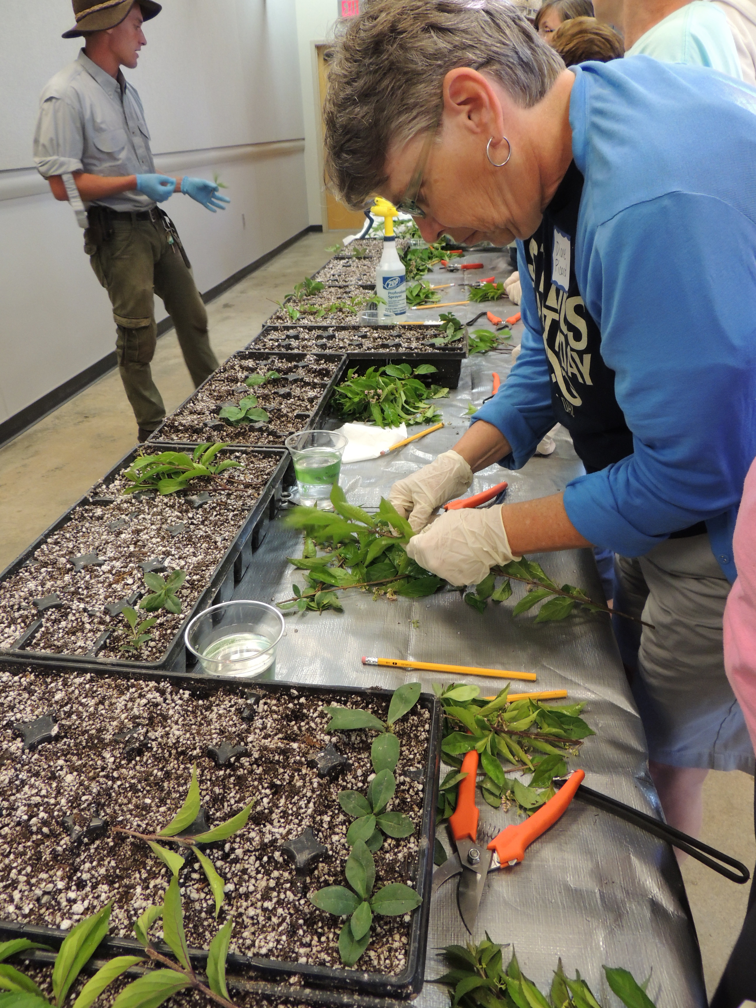 Adults learn from a Forest Park Forever horticulturist