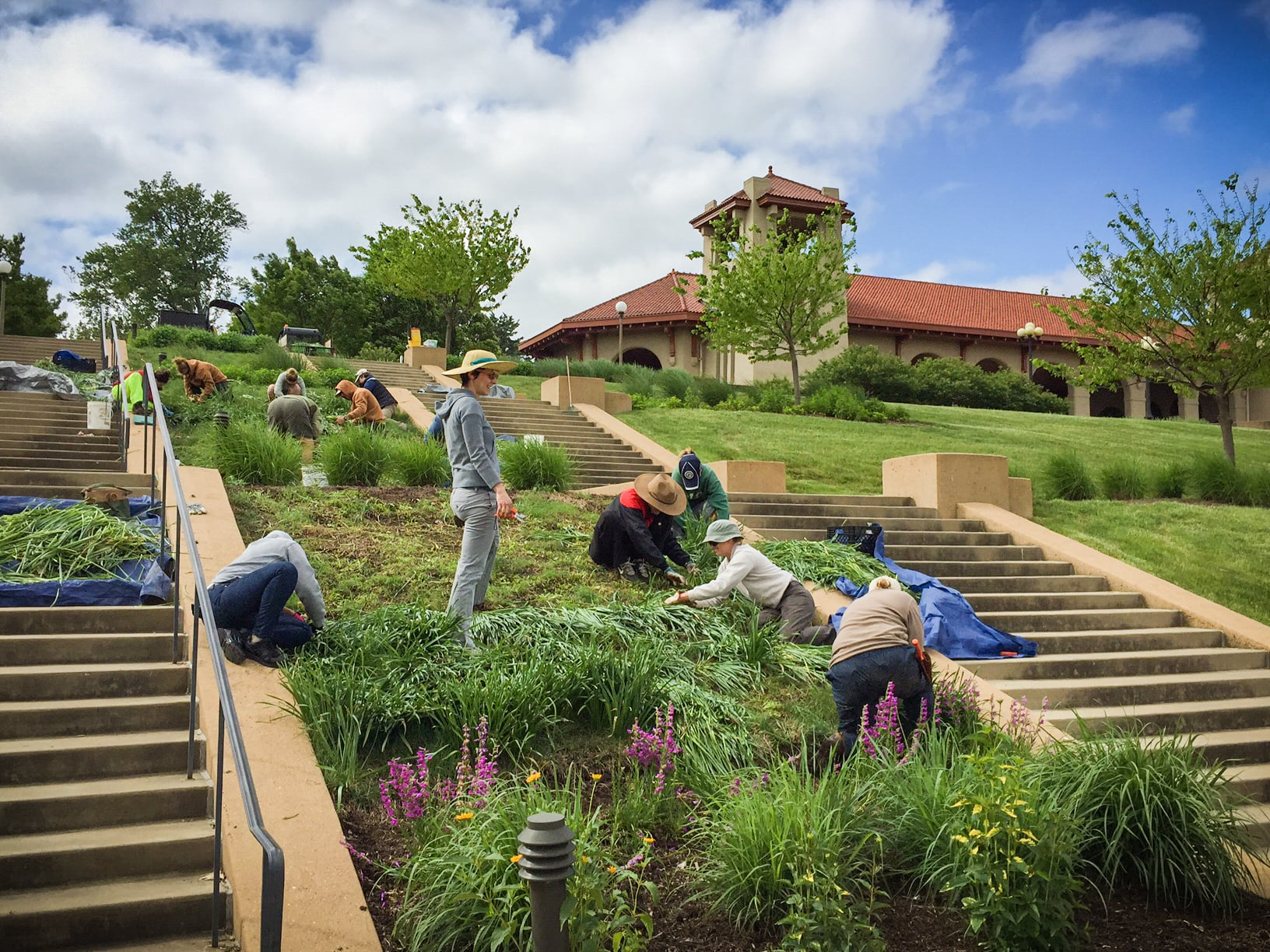 St. Louis Master Gardeners Park Project Day