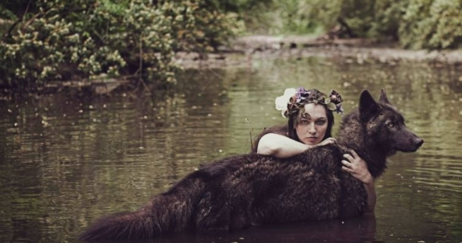 Rachel Lauren Photography