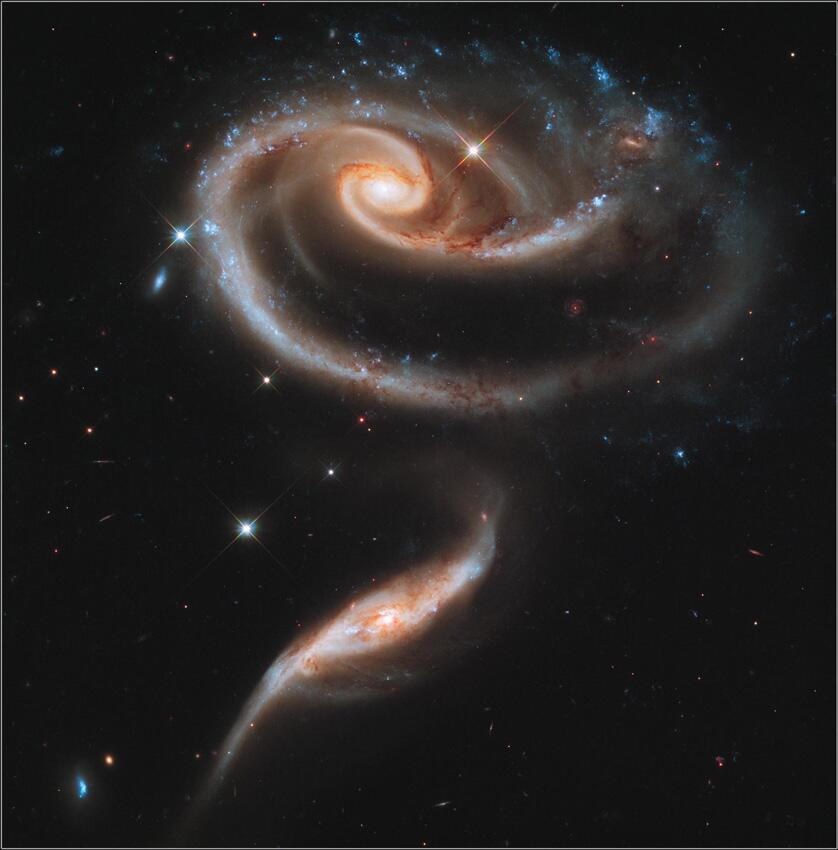 A 'Rose' Made of Galaxies. NASA.