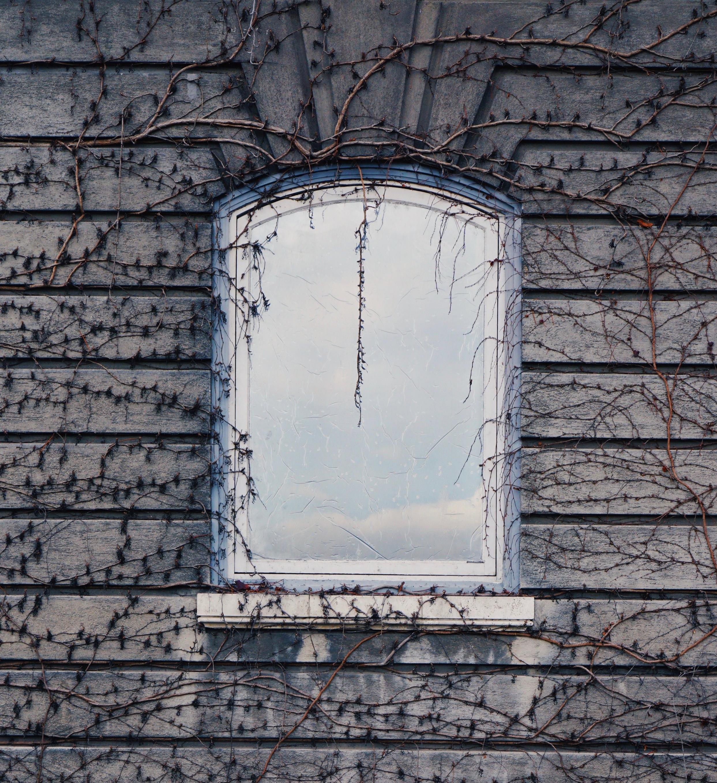 garden window