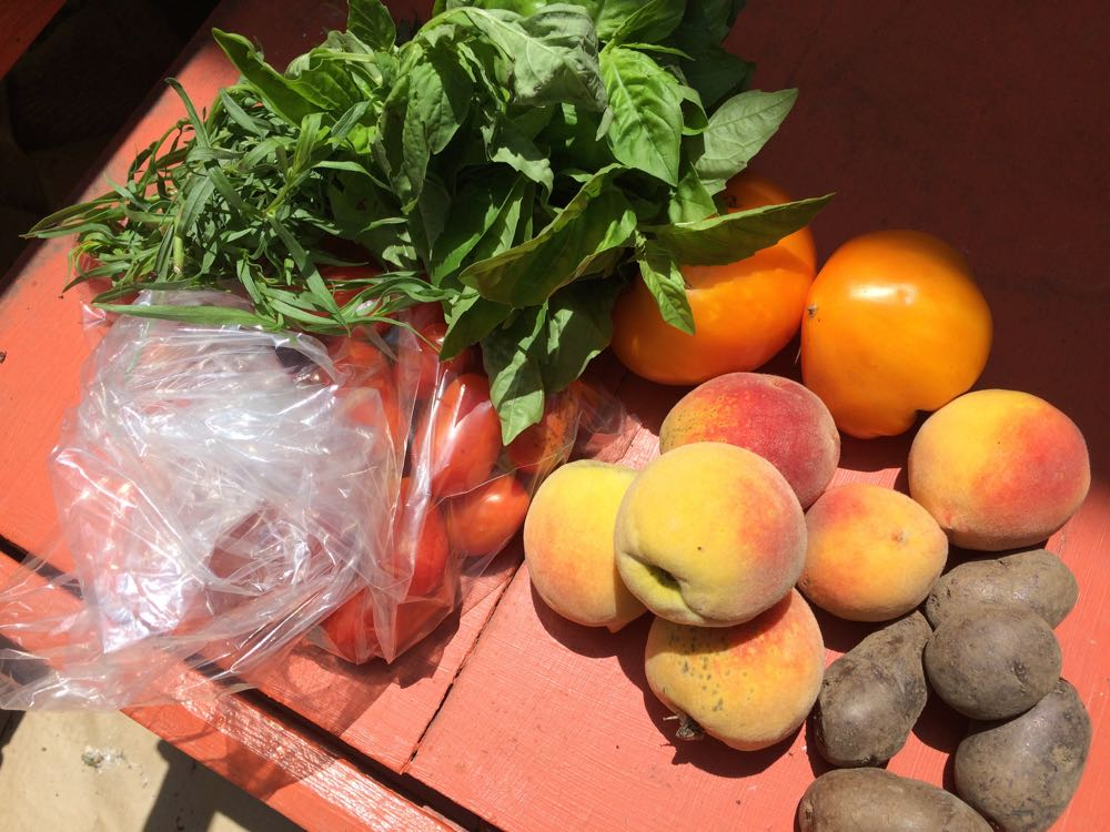 Rolla Farmer's Market finds include purple potatoes, tarragon, basil, tomatoes and peaches.