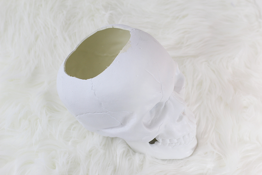 Spray paint your skull white first.