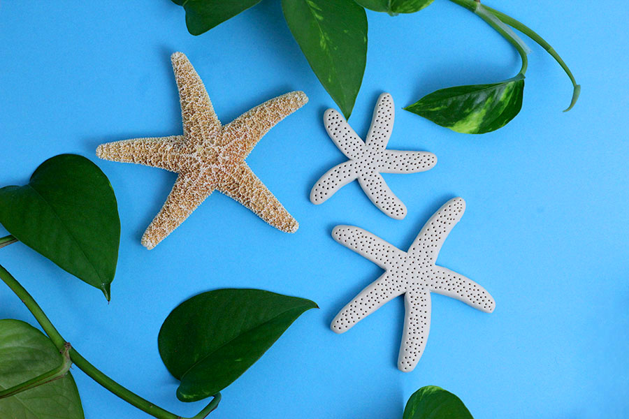 Faux starfish DIY turorial using polymer clay.