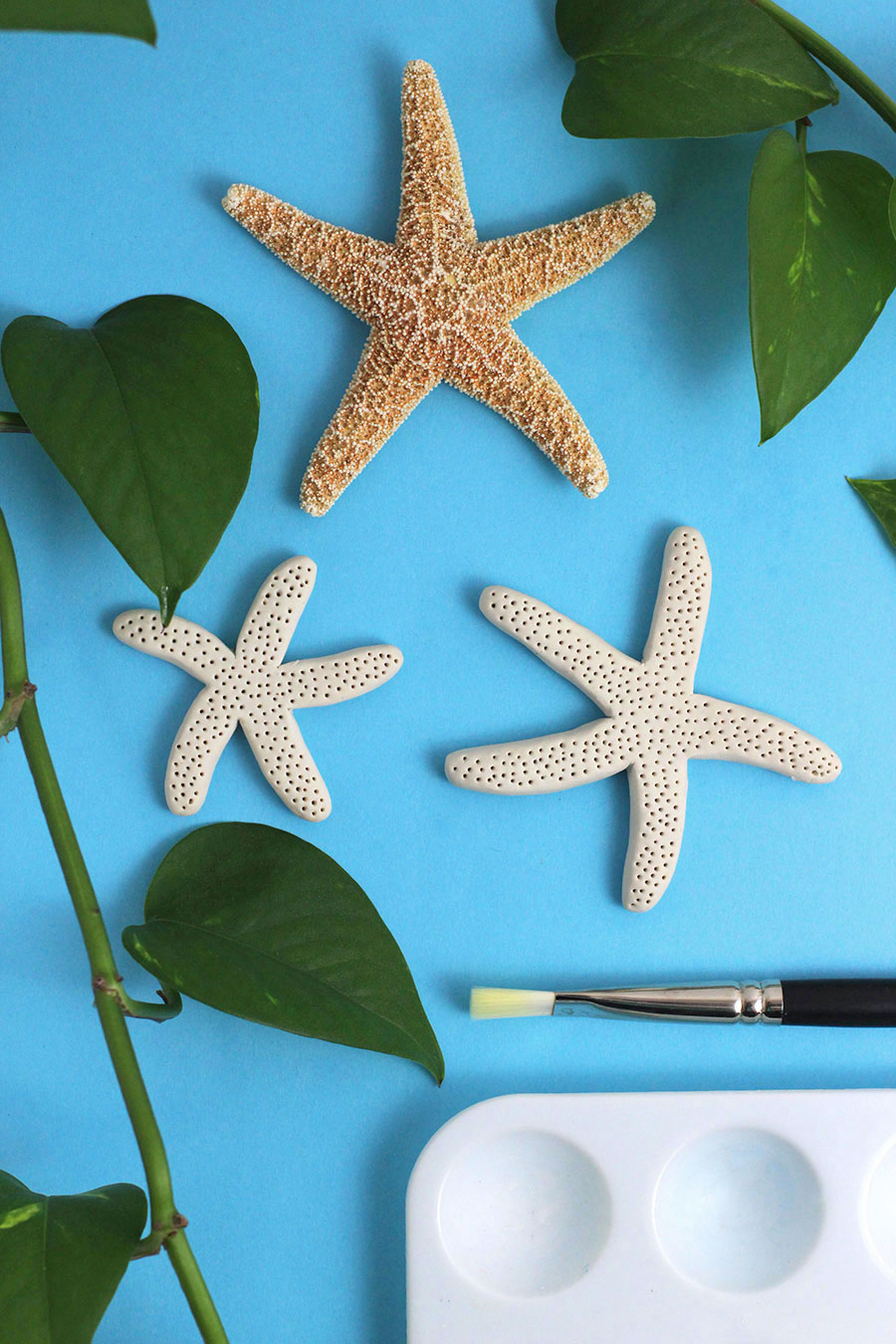 How to make faux starfish with clay. Super easy step-by-step on how to create faux starfish from scratch. Great for crafts, home decor projects, or just for fun! Click through to find out how.