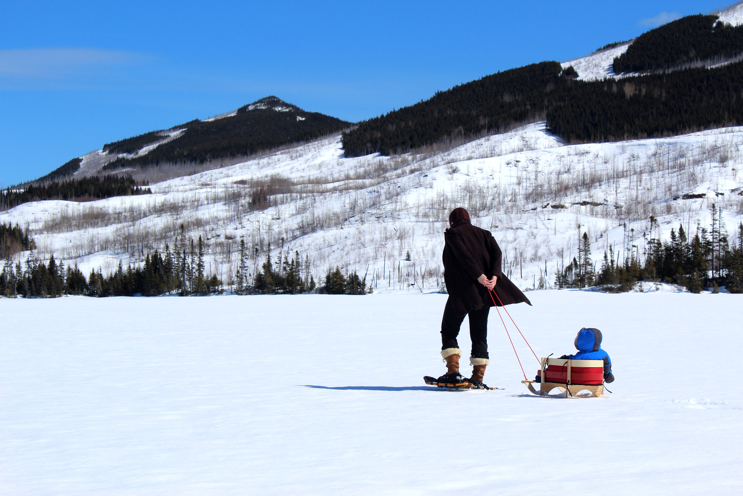 sled and snow shoes on frozen lake canada.jpg