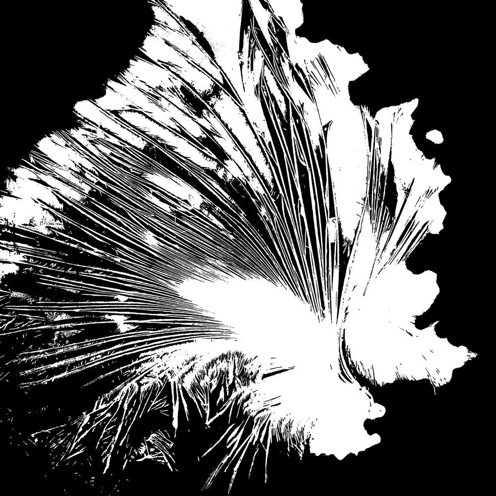 15.00                Valters Jānis Ezeriņš , untitled, from the series  Crystallographs , 1964-1968.