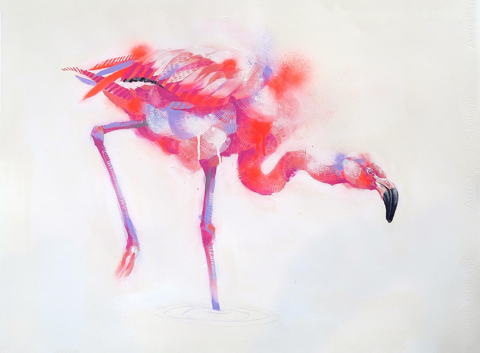 Flamingo Study 1