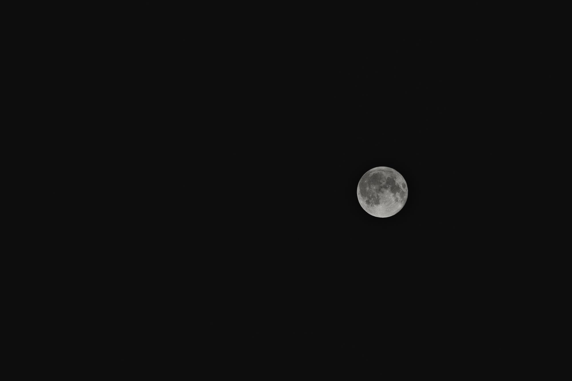 www.sarakrebsbach.com_full moon-1.jpg