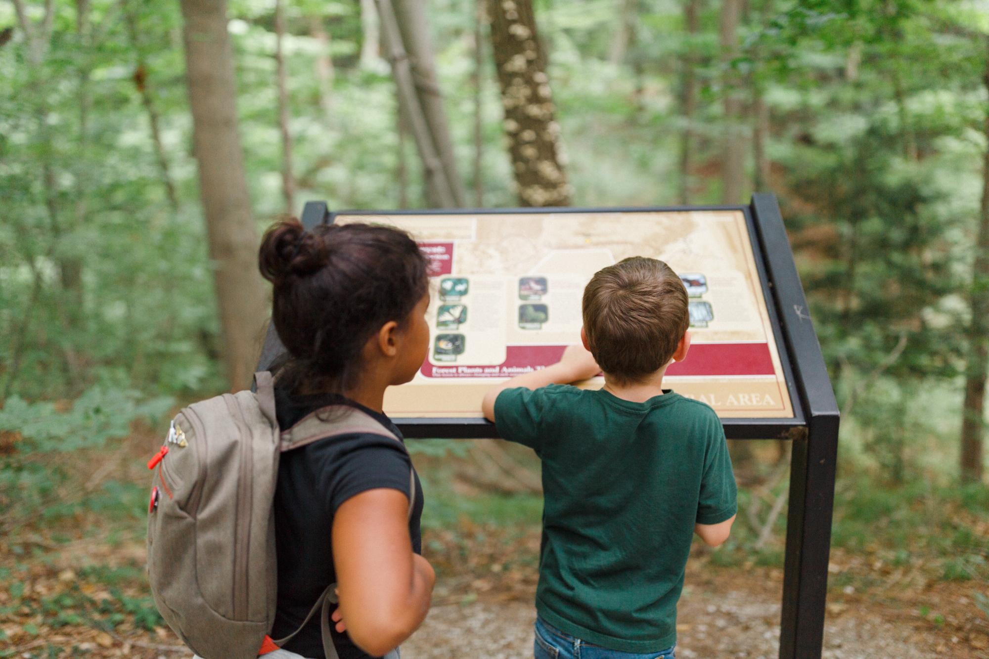 www.sarakrebsbach.com_rosy mound-9.jpg
