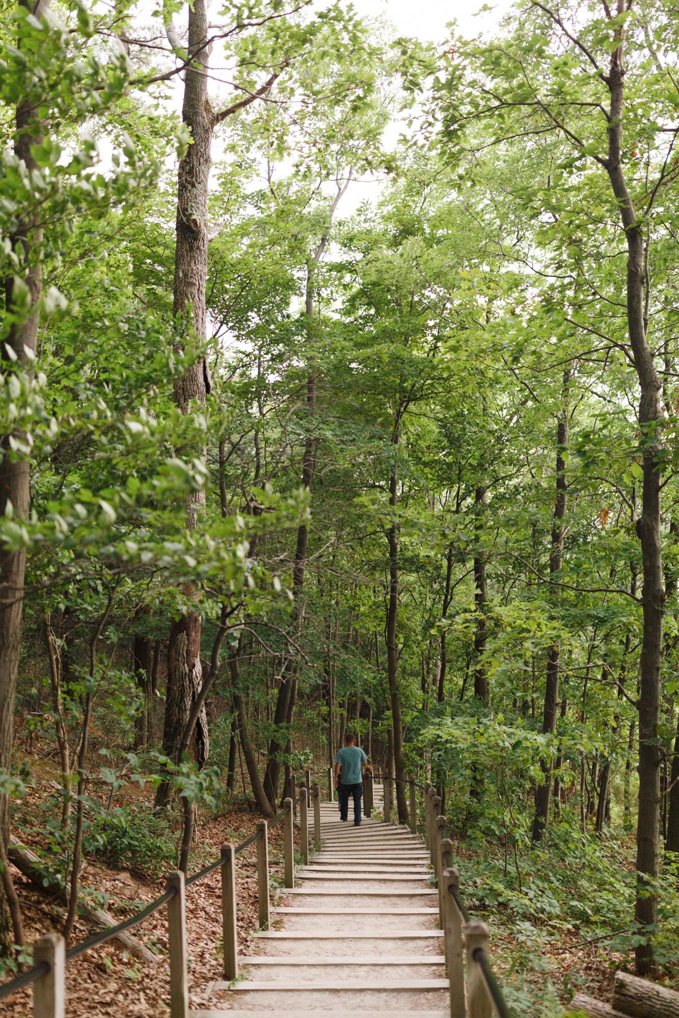 www.sarakrebsbach.com_rosy mound-15.jpg