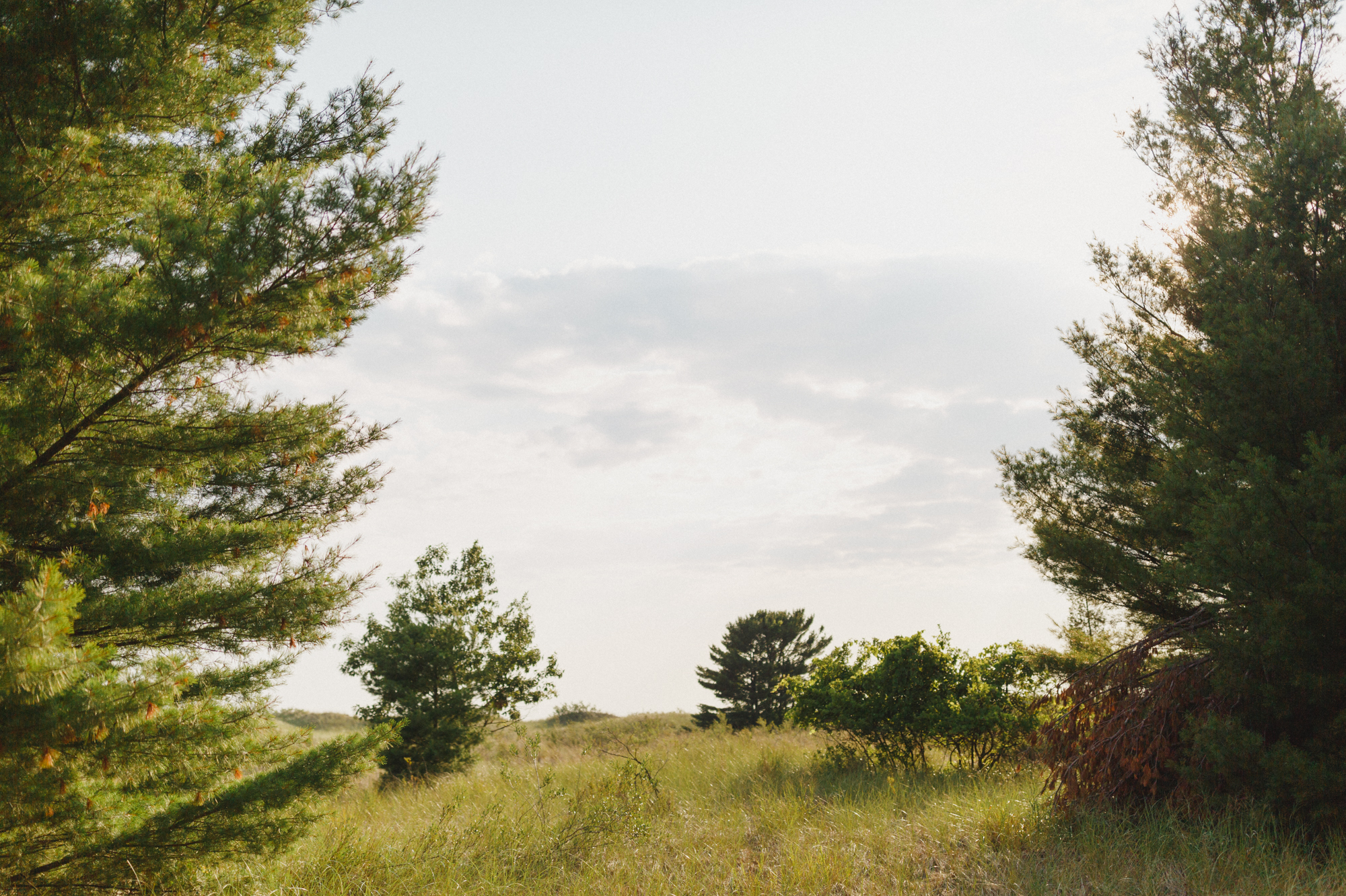 www.sarakrebsbach.com_rosy mound-22.jpg