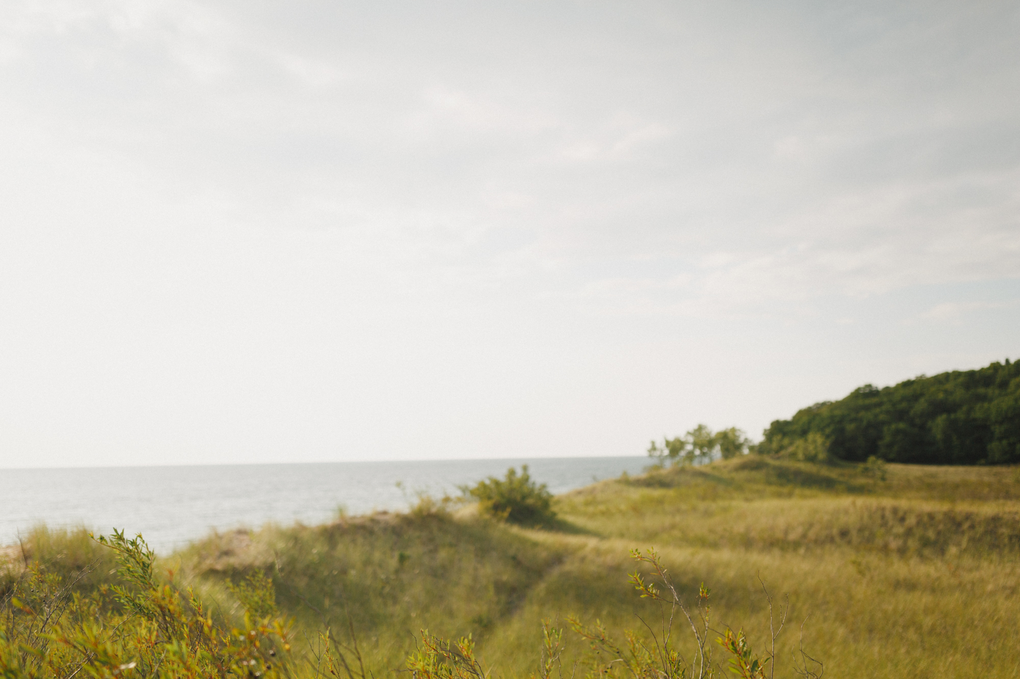 www.sarakrebsbach.com_rosy mound-27.jpg