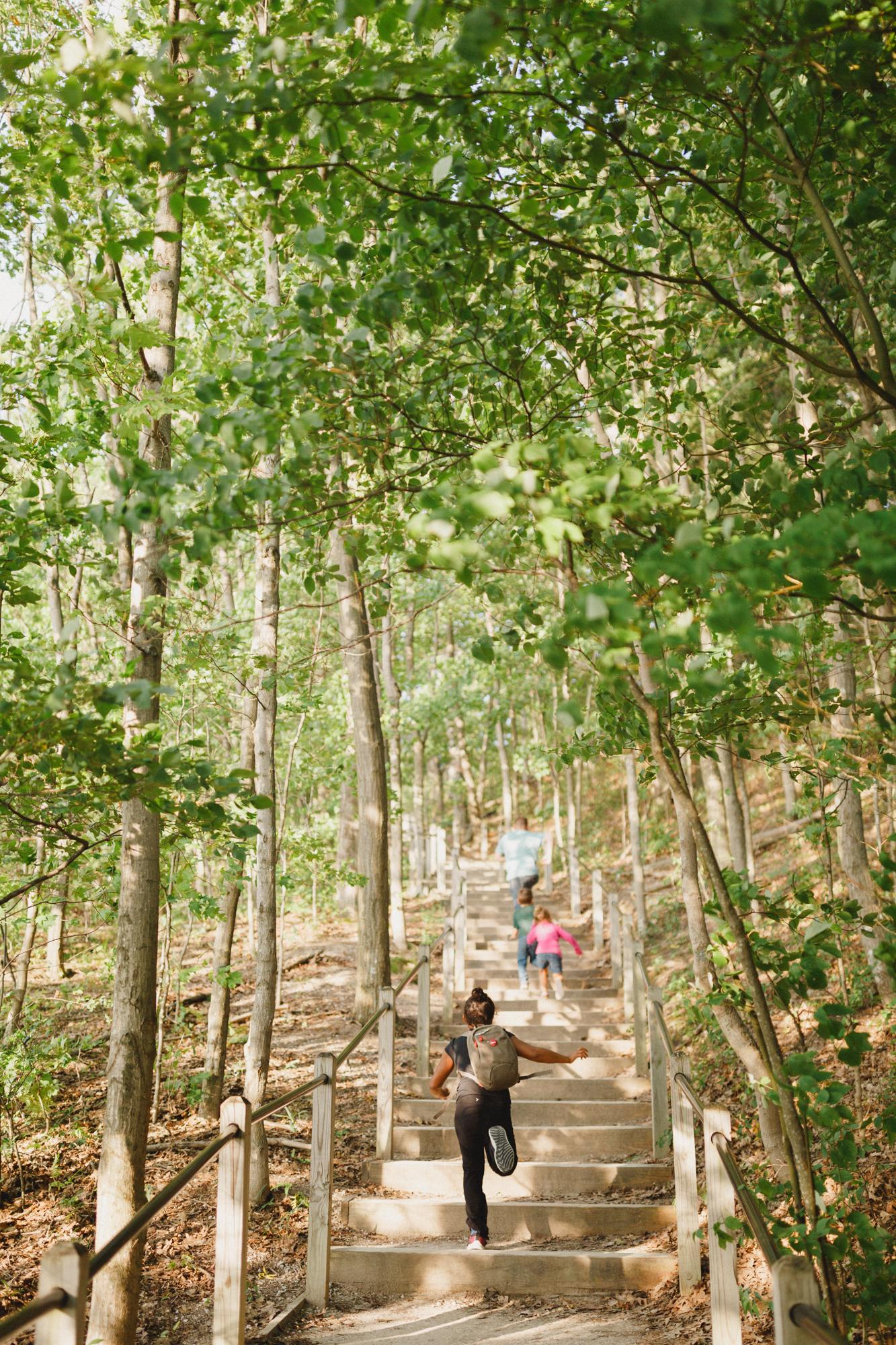 www.sarakrebsbach.com_rosy mound-51.jpg