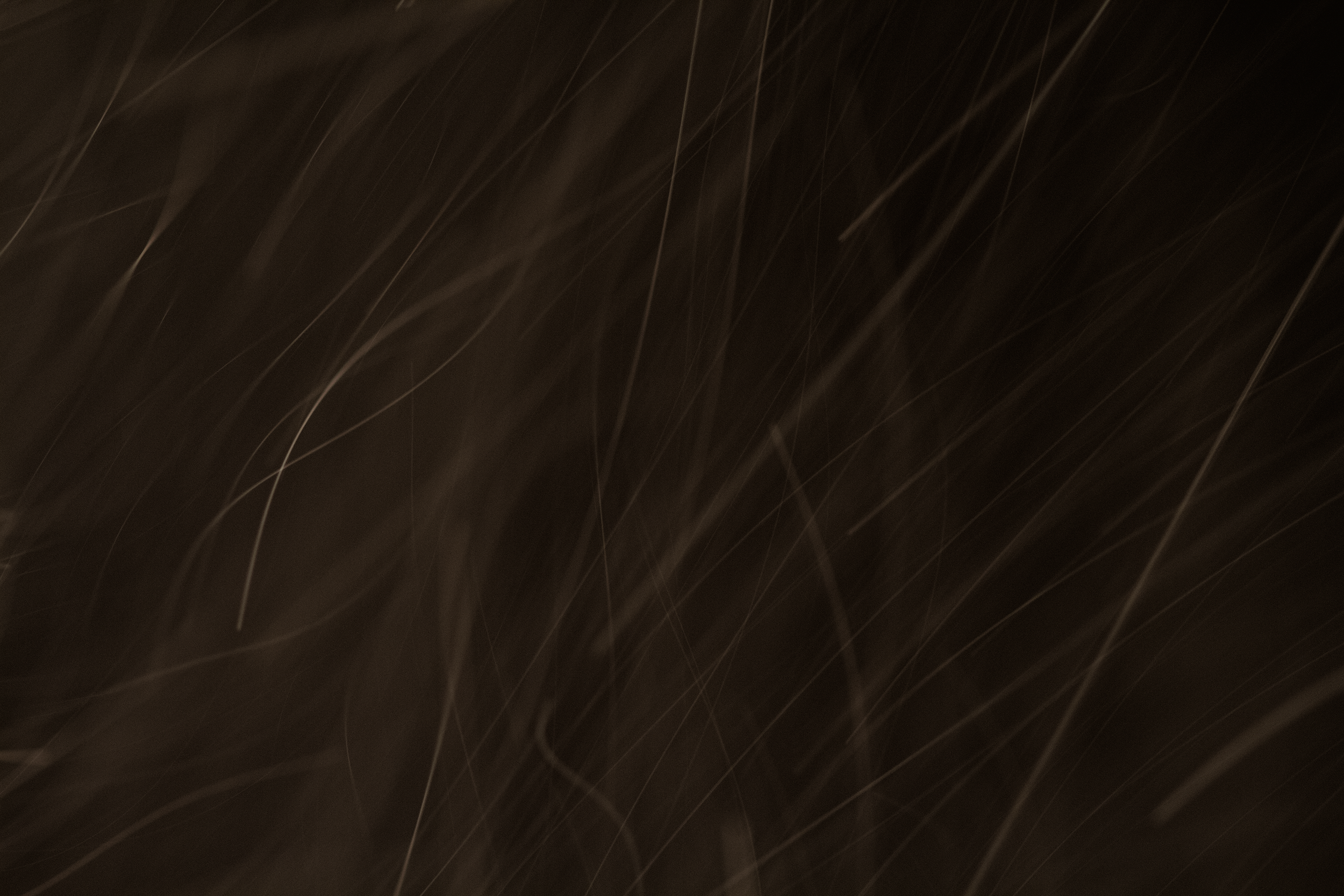 Dust IV.png