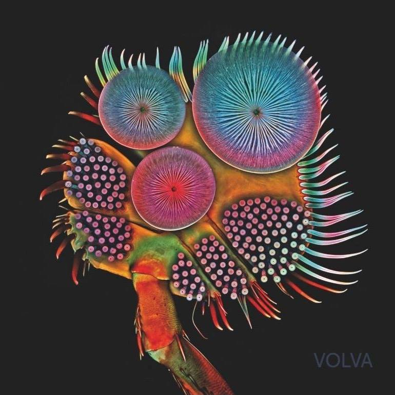 VOLVA - Volva is the second studio album of Echolot.It features four songs (II, III, IV & V, 55 min.) and was released in october as double lp, download and cd.Volva was recorded and mixed by Marc Obrist (Blue Shelter Studio), mastered by Dan Suter (Echochamber) and will be distributed via Czar Of Crickets Productions.